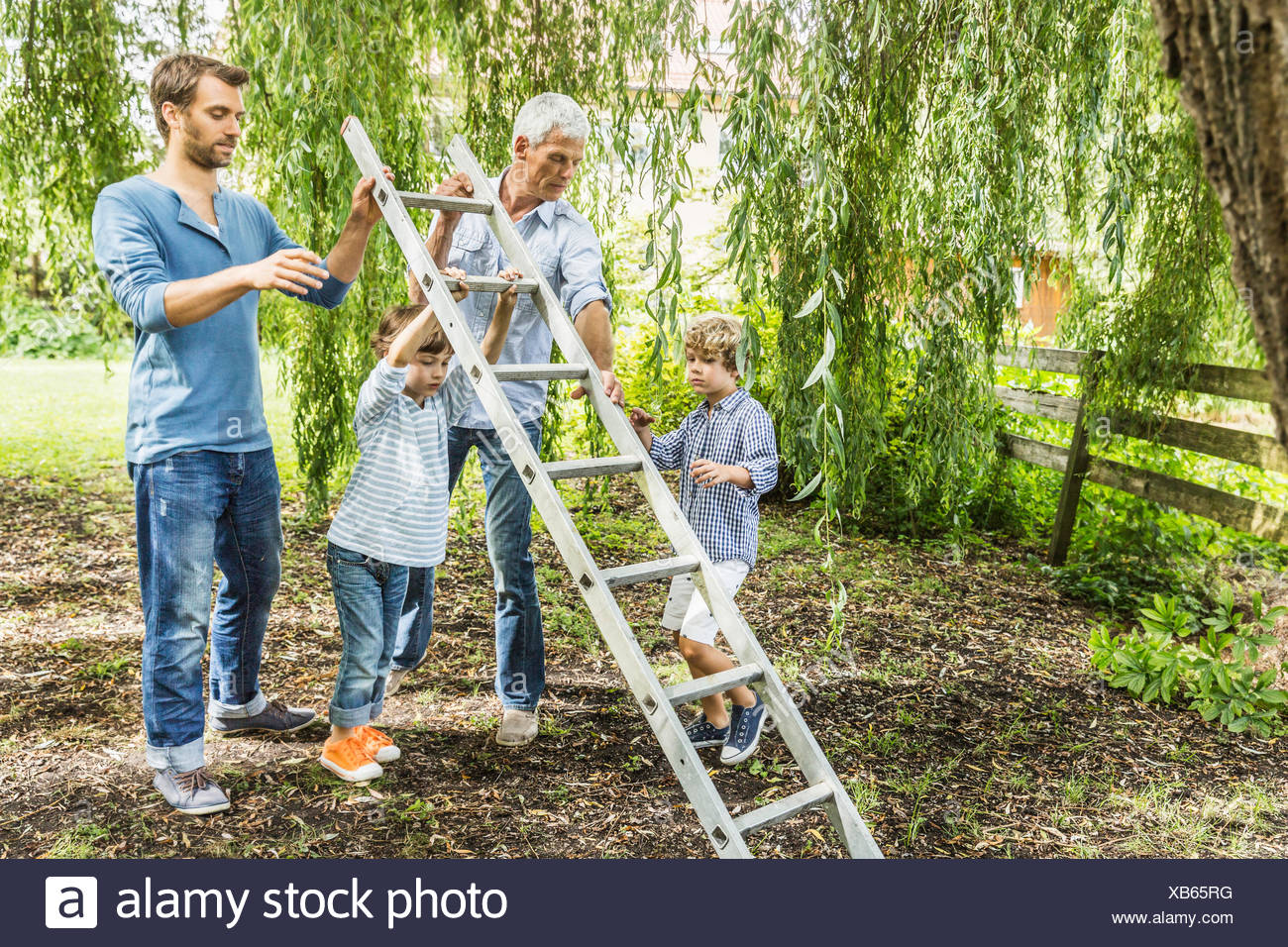 Mature man with son lifting ladder with grandsons in garden - Stock Image