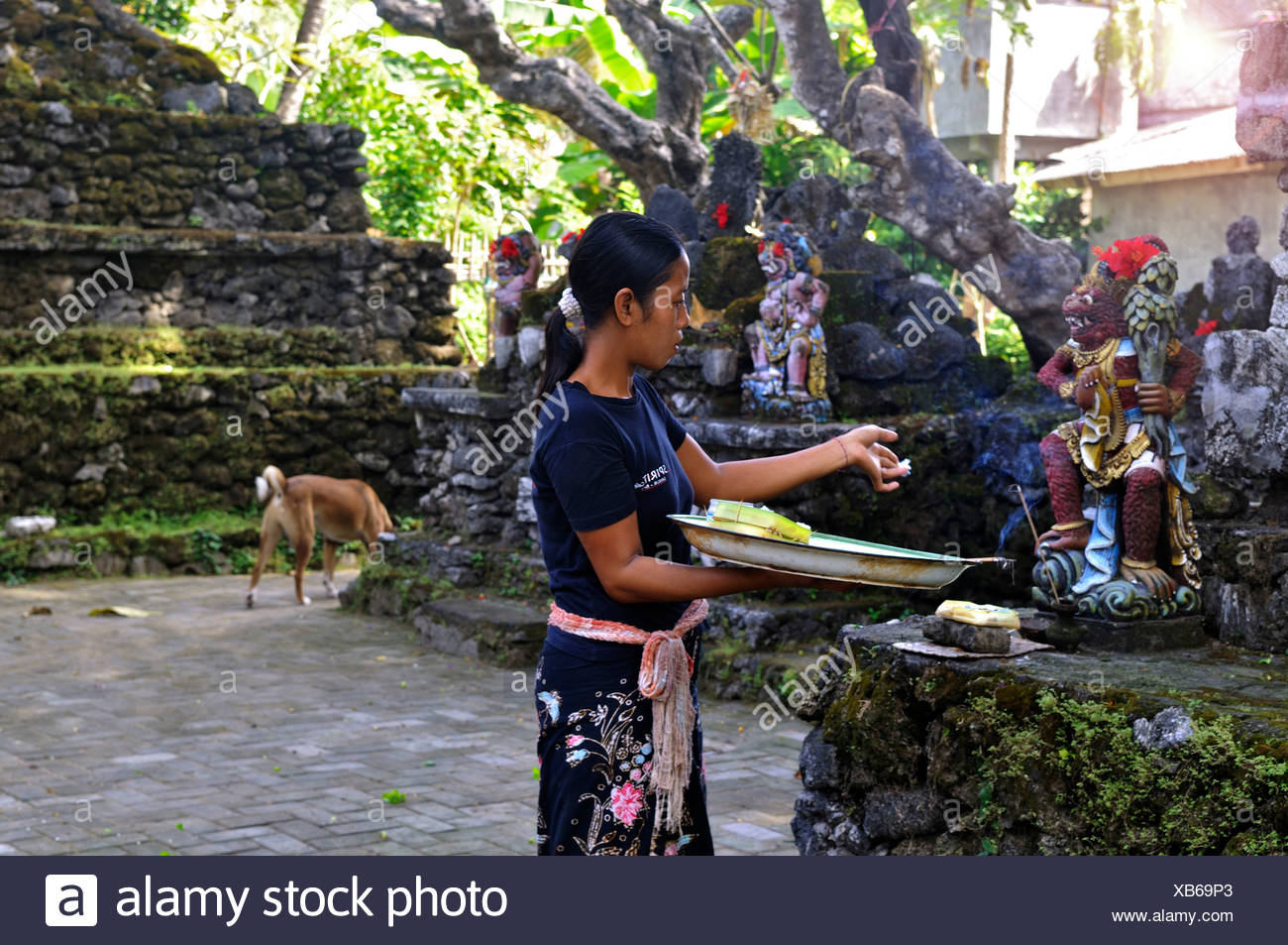 Offerings to the gods, Denpasar, Bali, Indonesia, Southeast Asia - Stock Image