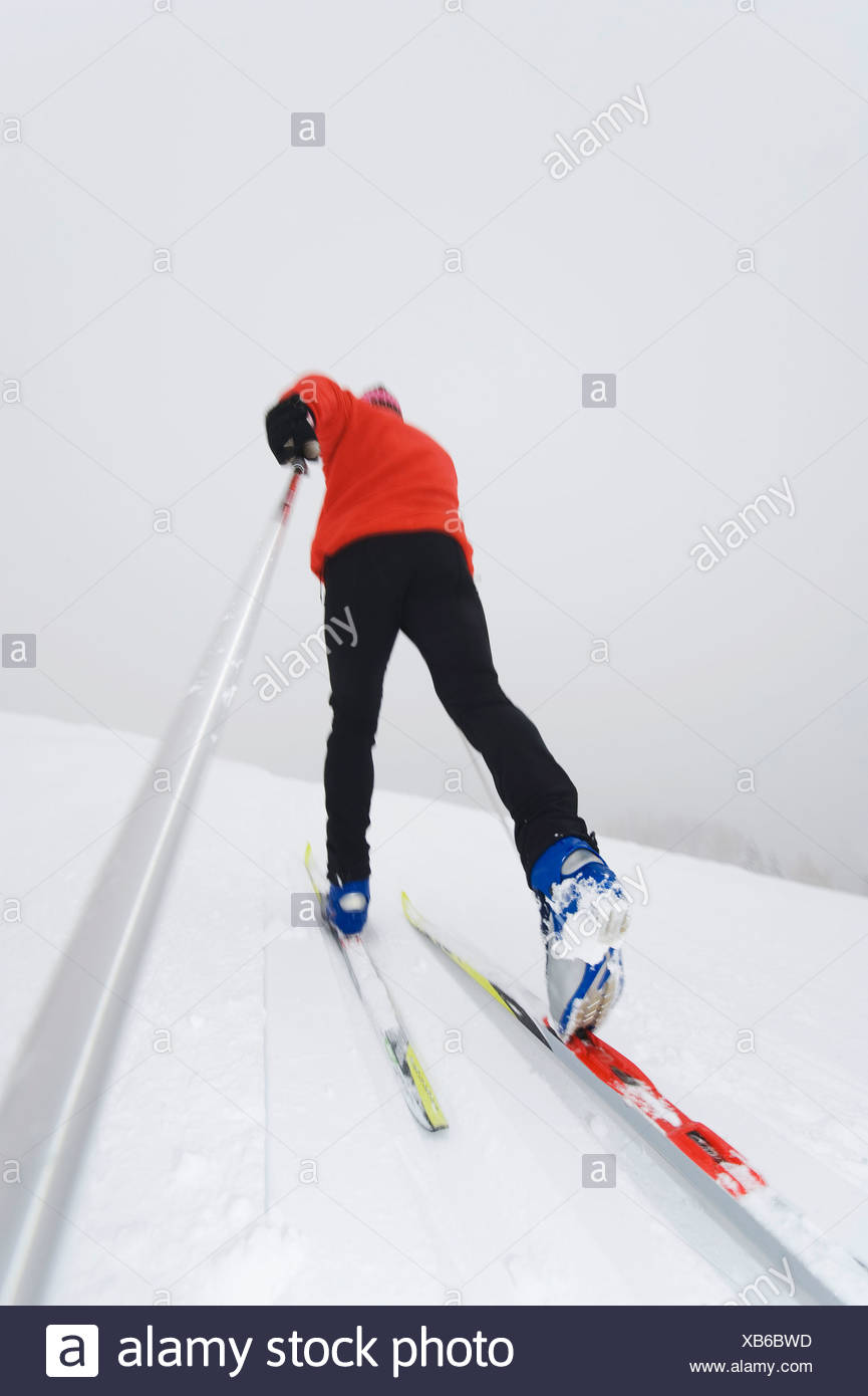 Italy, South Tyrol, Man cross-country skiing, rear view - Stock Image