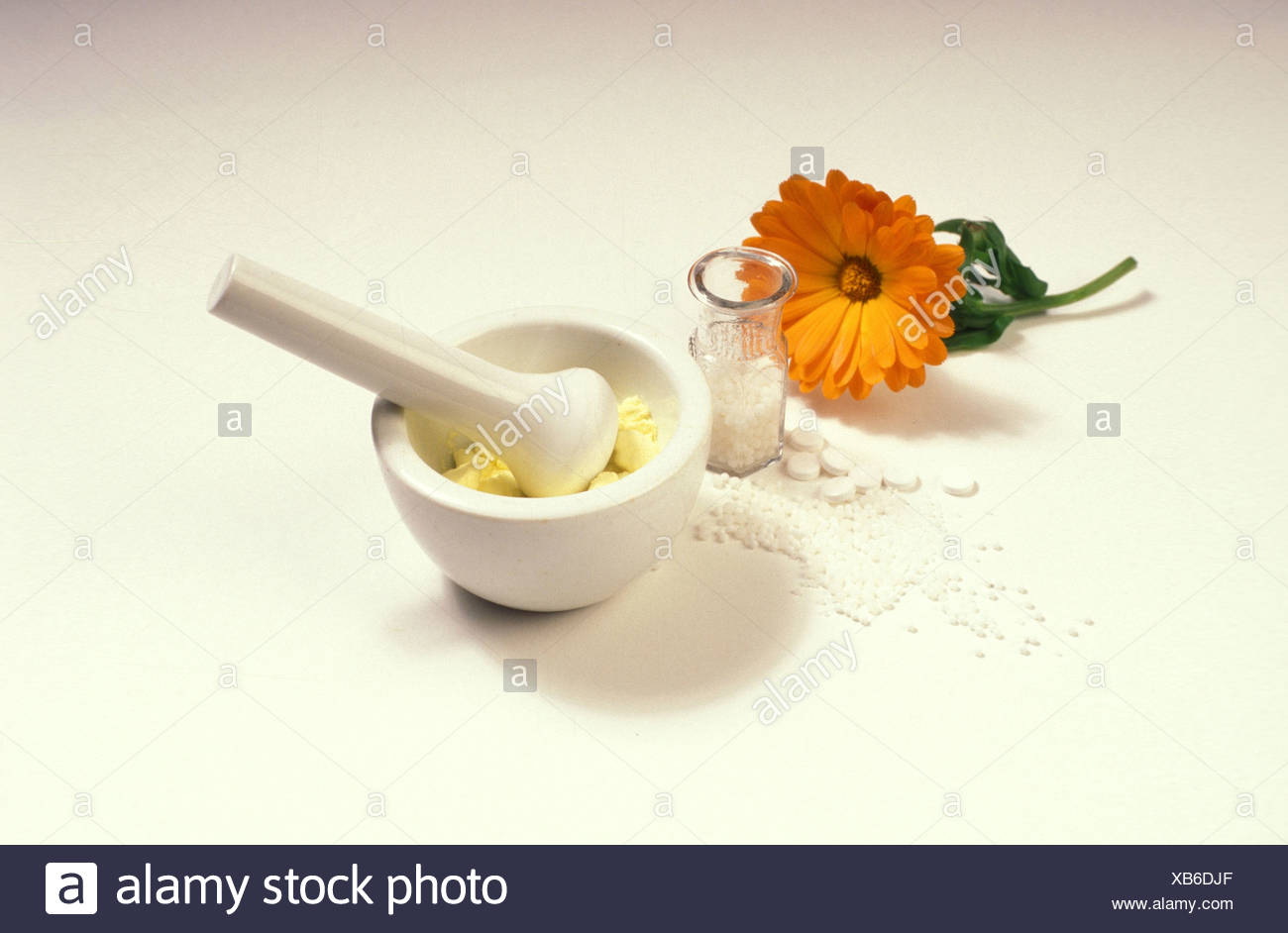 Flower and mortar - Stock Image