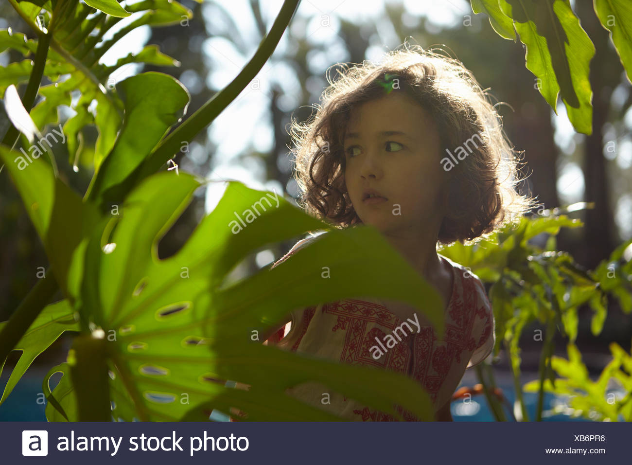 Young girl, worried expression, standing amongst foliage - Stock Image