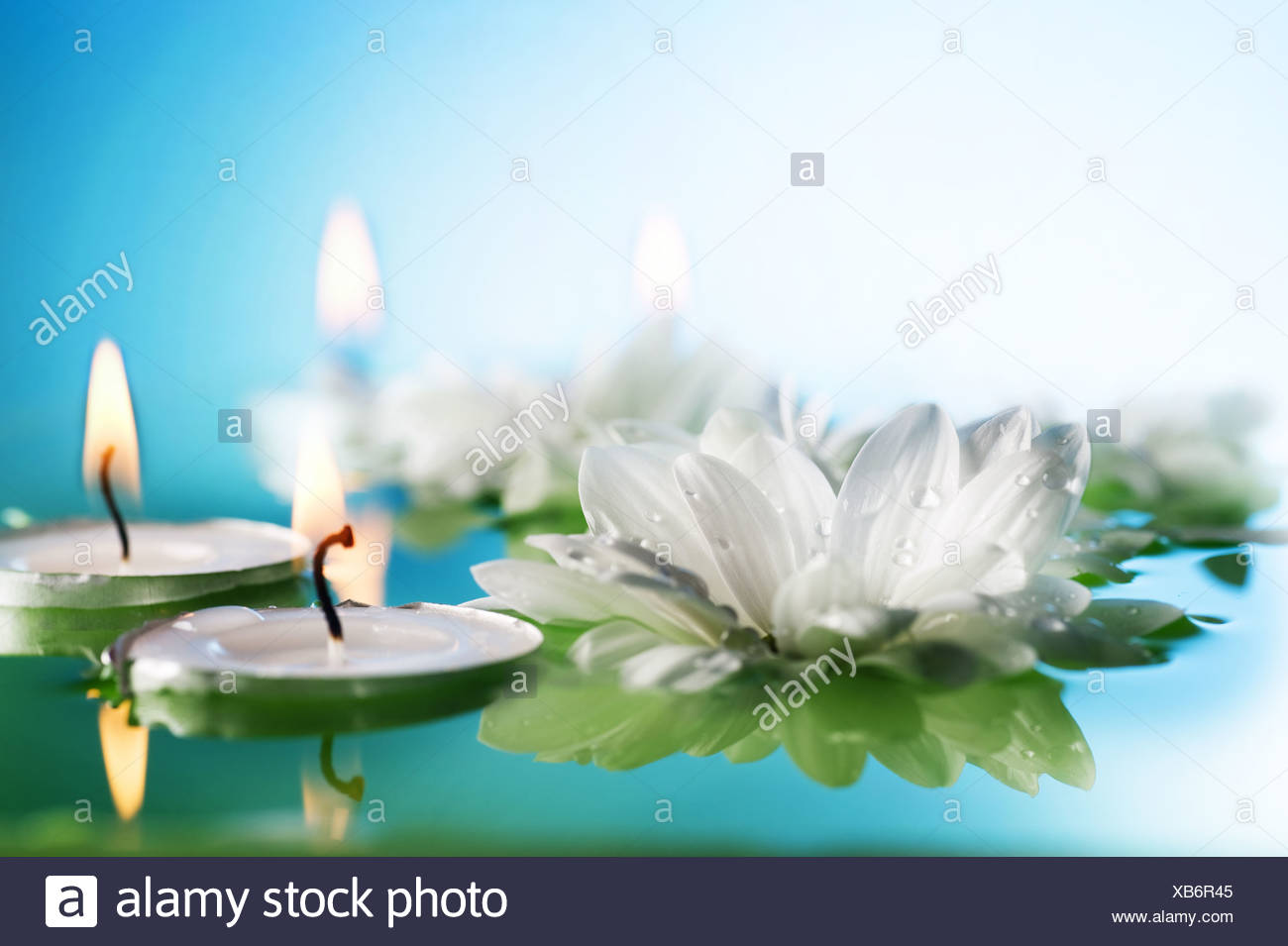 Lotus Flower And Candles Stock Photos Lotus Flower And Candles