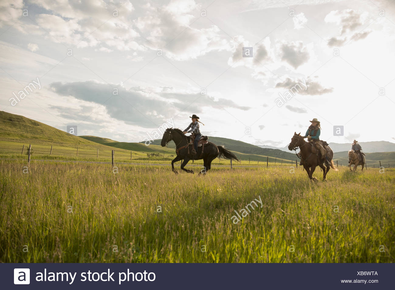 Female ranchers galloping horseback in remote sunny field - Stock Image
