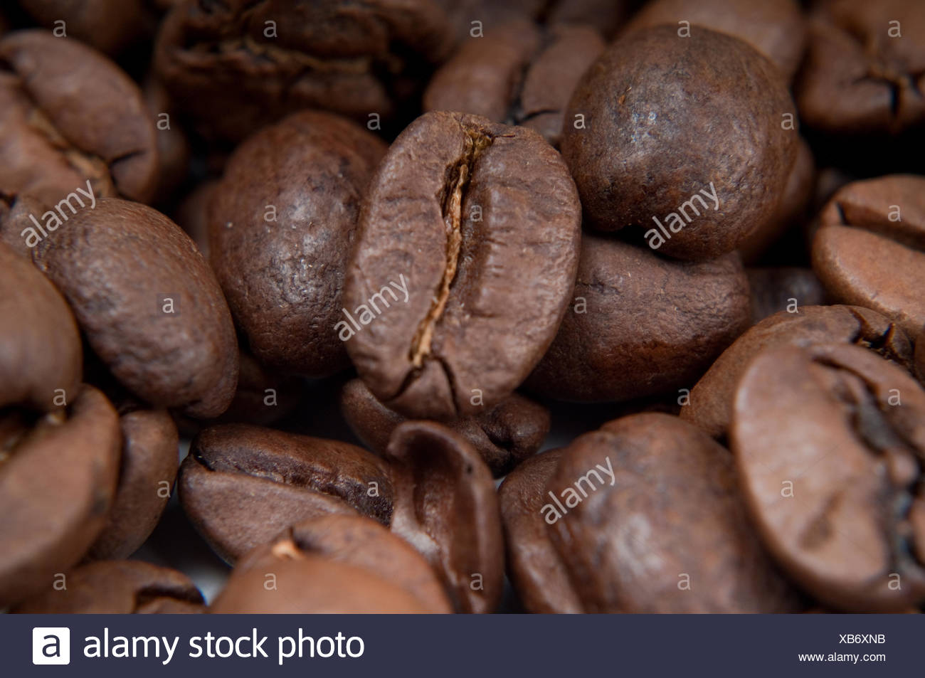 Macro shot of cafee beans - Stock Image