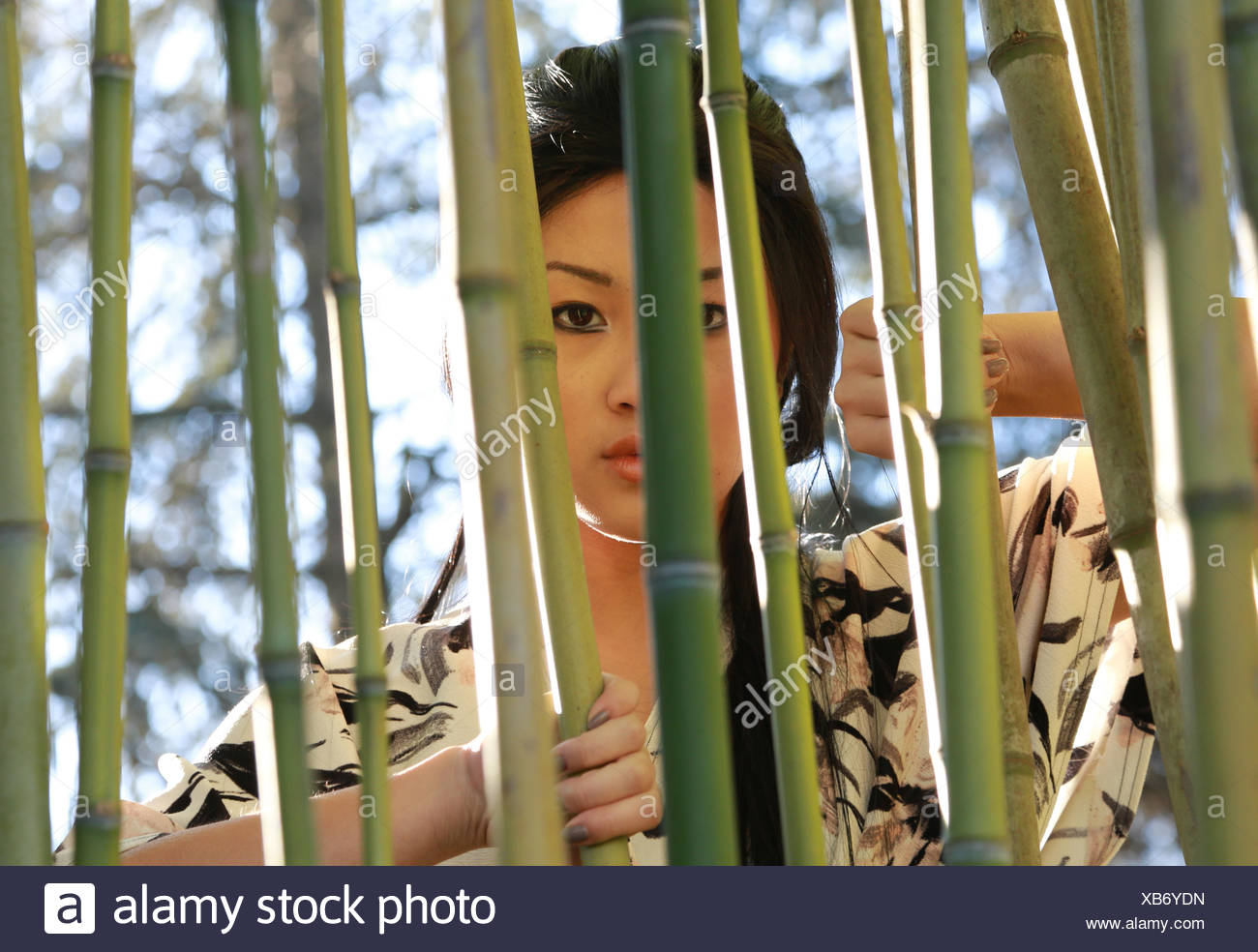 Close Up Of Woman Looking Through Bamboo Plants Stock Photo