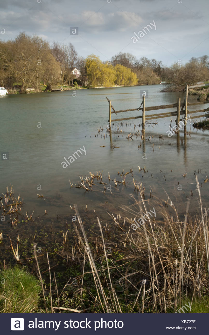 River Thames between Little Wittenham and Clifton Hampden Oxfordshire Uk Stock Photo