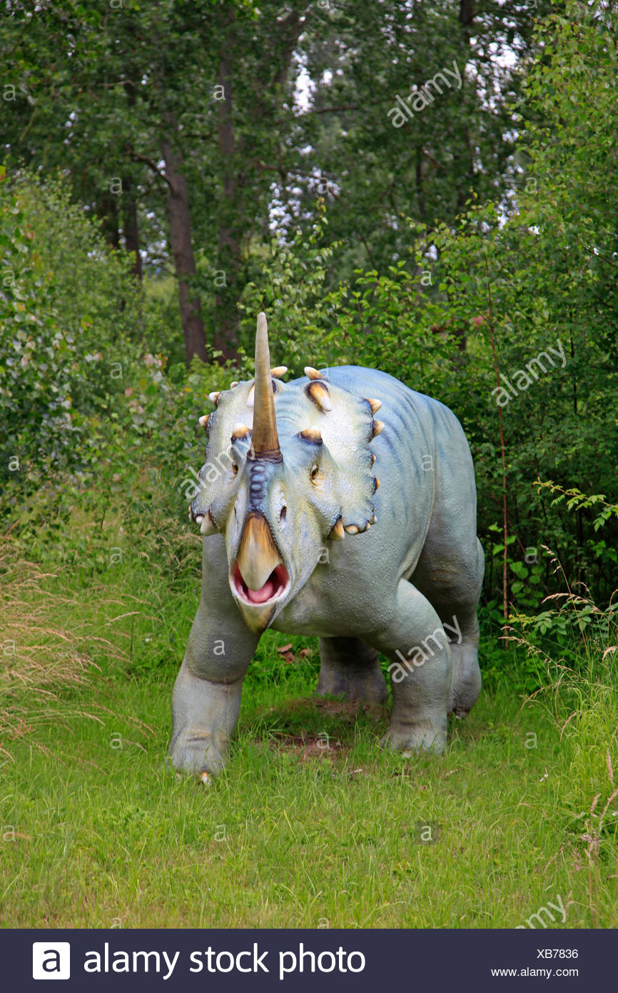 Well-horned Lizard (Centrosaurus), belligerent - Stock Image