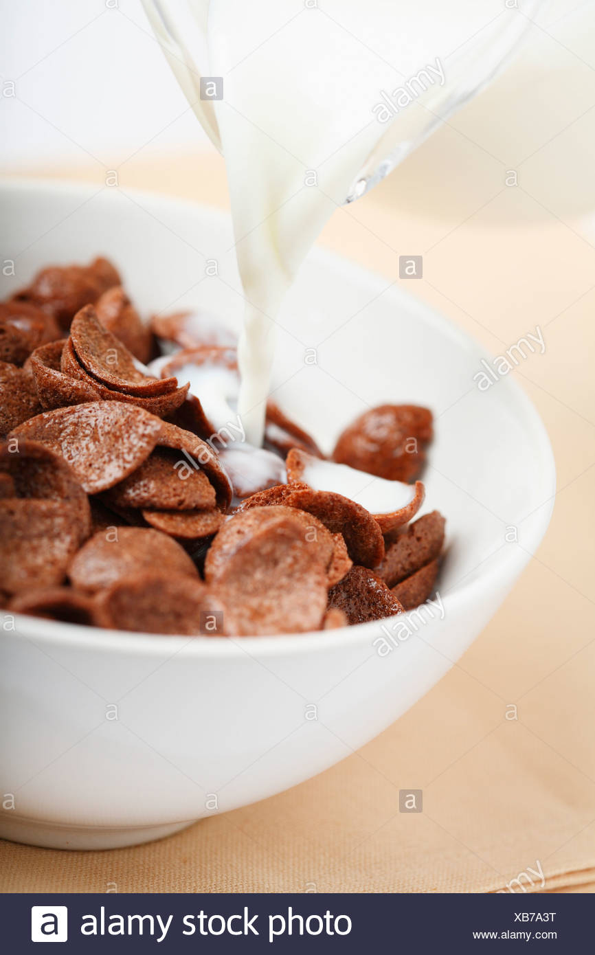 Chocolate cereal with milk Stock Photo