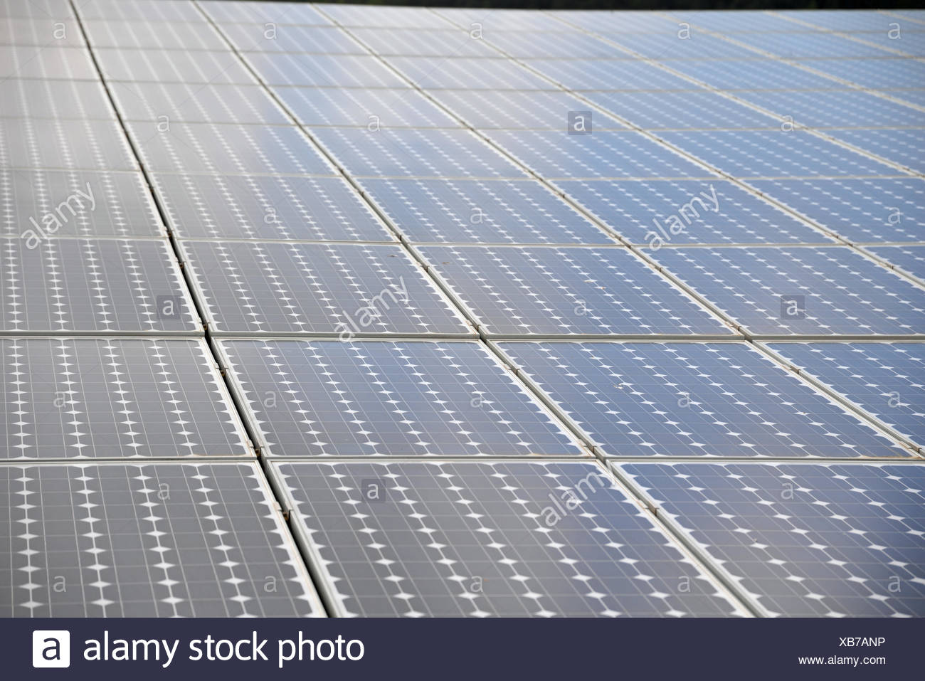 Solarzellen Solarzelle Dach Solaranlage Solarenergie
