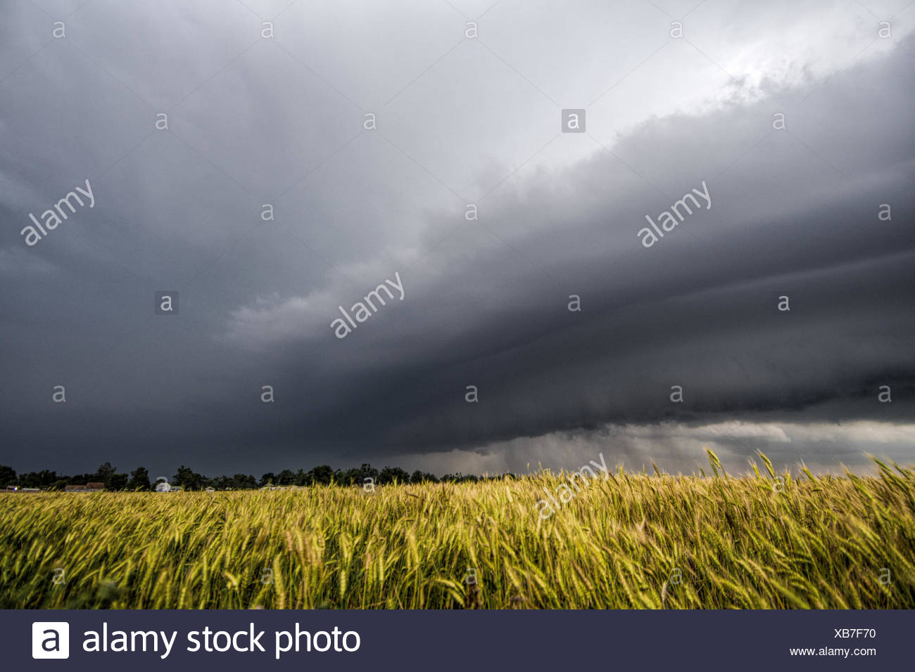 Layered supercell storm over and around wheat fields, Fairview, Oklahoma, USA Stock Photo