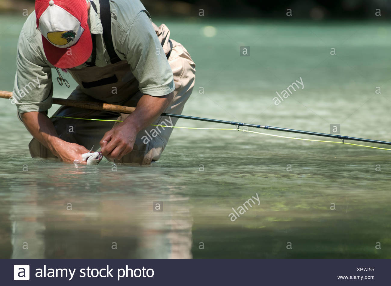 A man takes off the hook from a fish he caught while fly fishing in Squamish, British, Columbia. - Stock Image