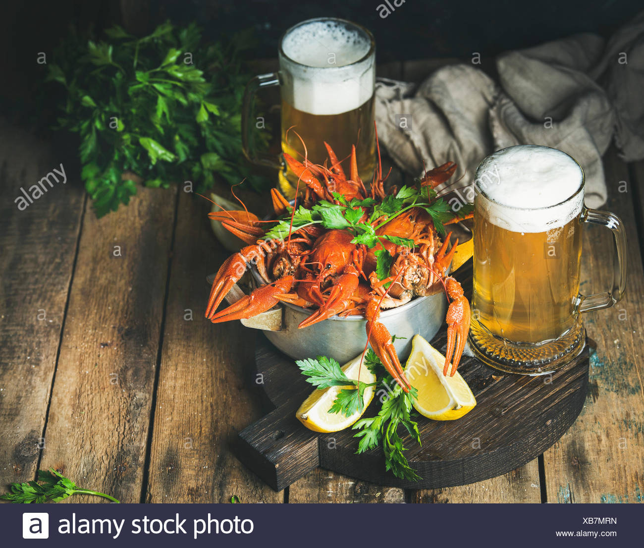 Two pints of wheat beer and boiled crayfish in metal pan served with with lemon and parsley on dark round serving board over rus - Stock Image