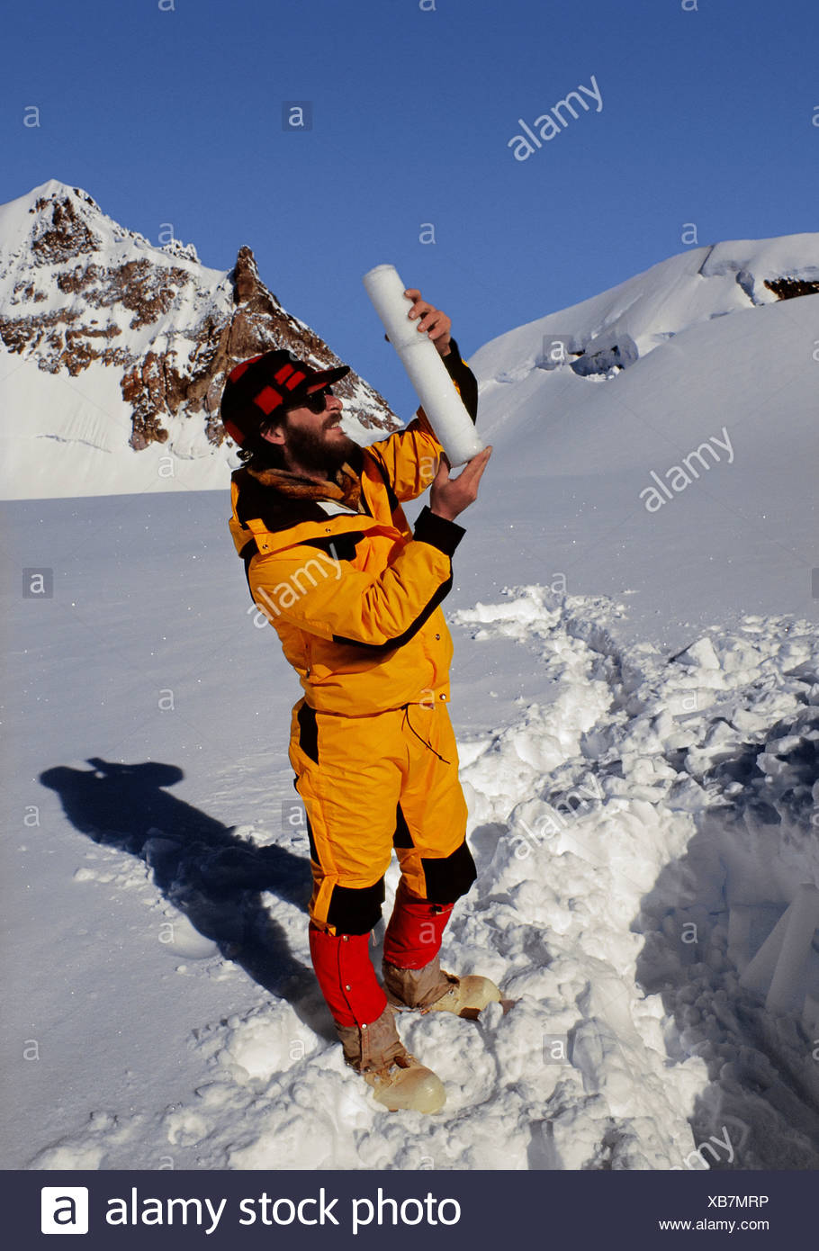 Looking at Ice Core - Stock Image