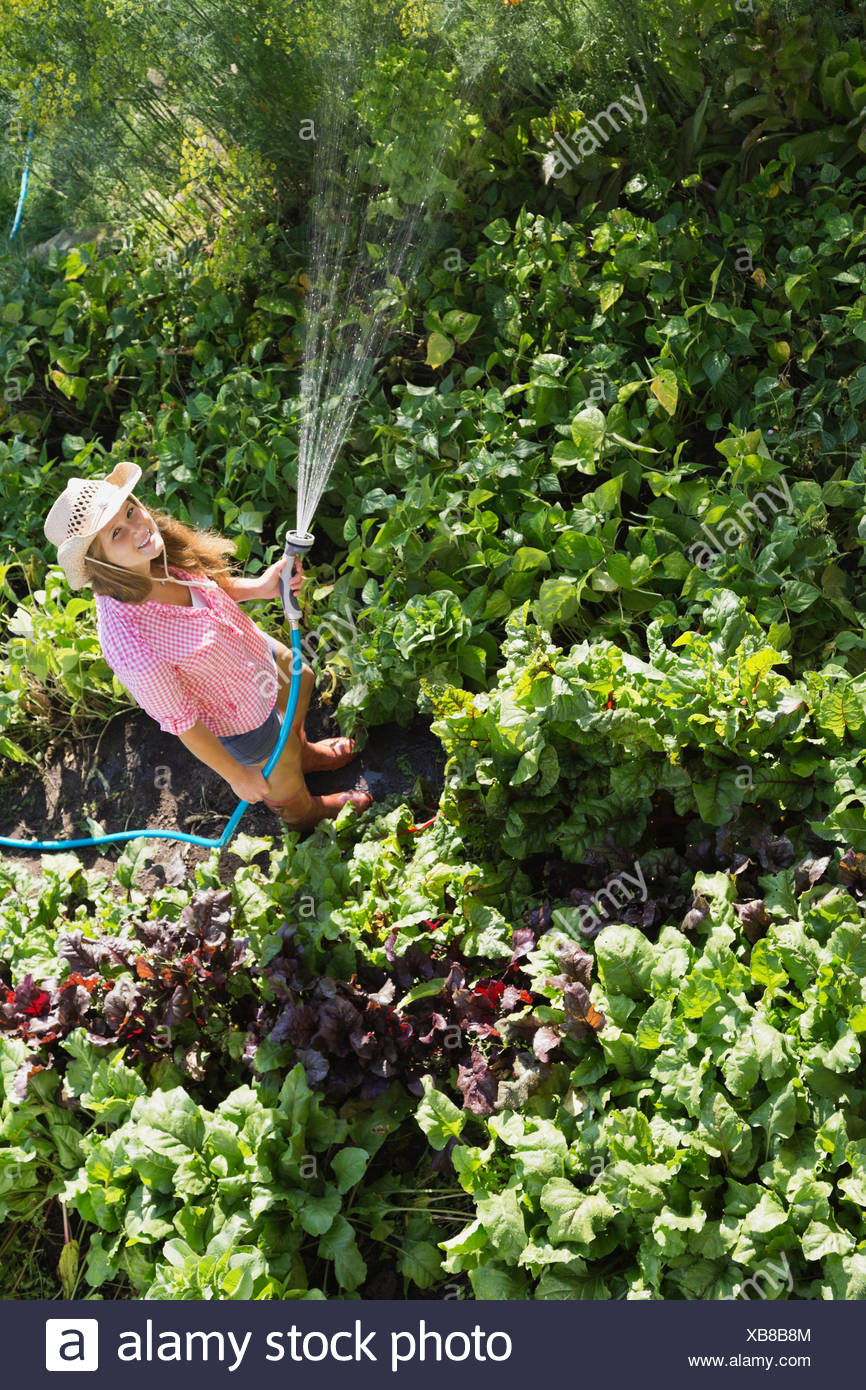 High angle view of woman watering plants in vegetable garden - Stock Image