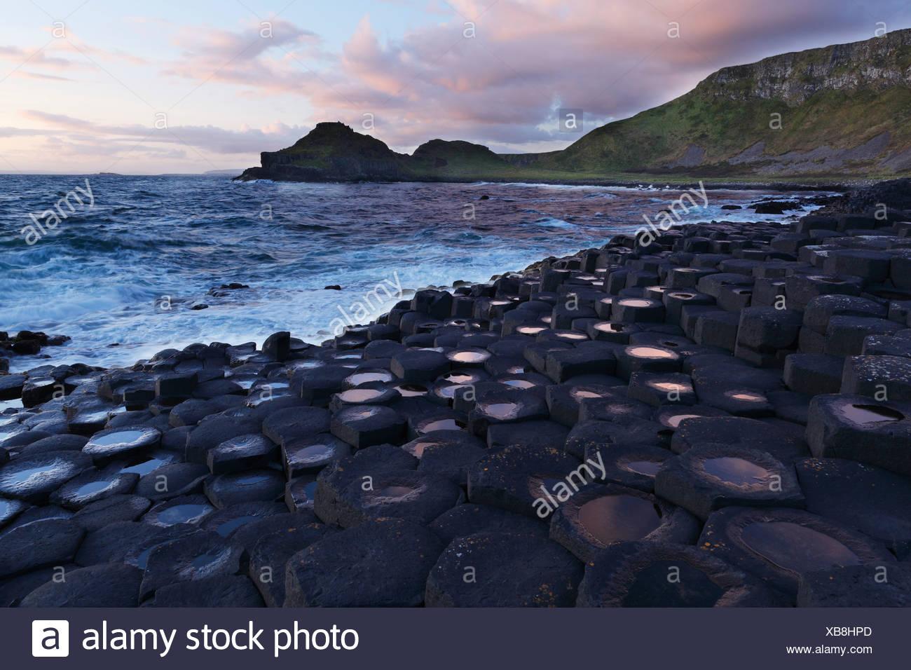 Basaltic columns, Giant's Causeway, Causeway Coast, County Antrim, Northern Ireland, United Kingdom, Europe - Stock Image