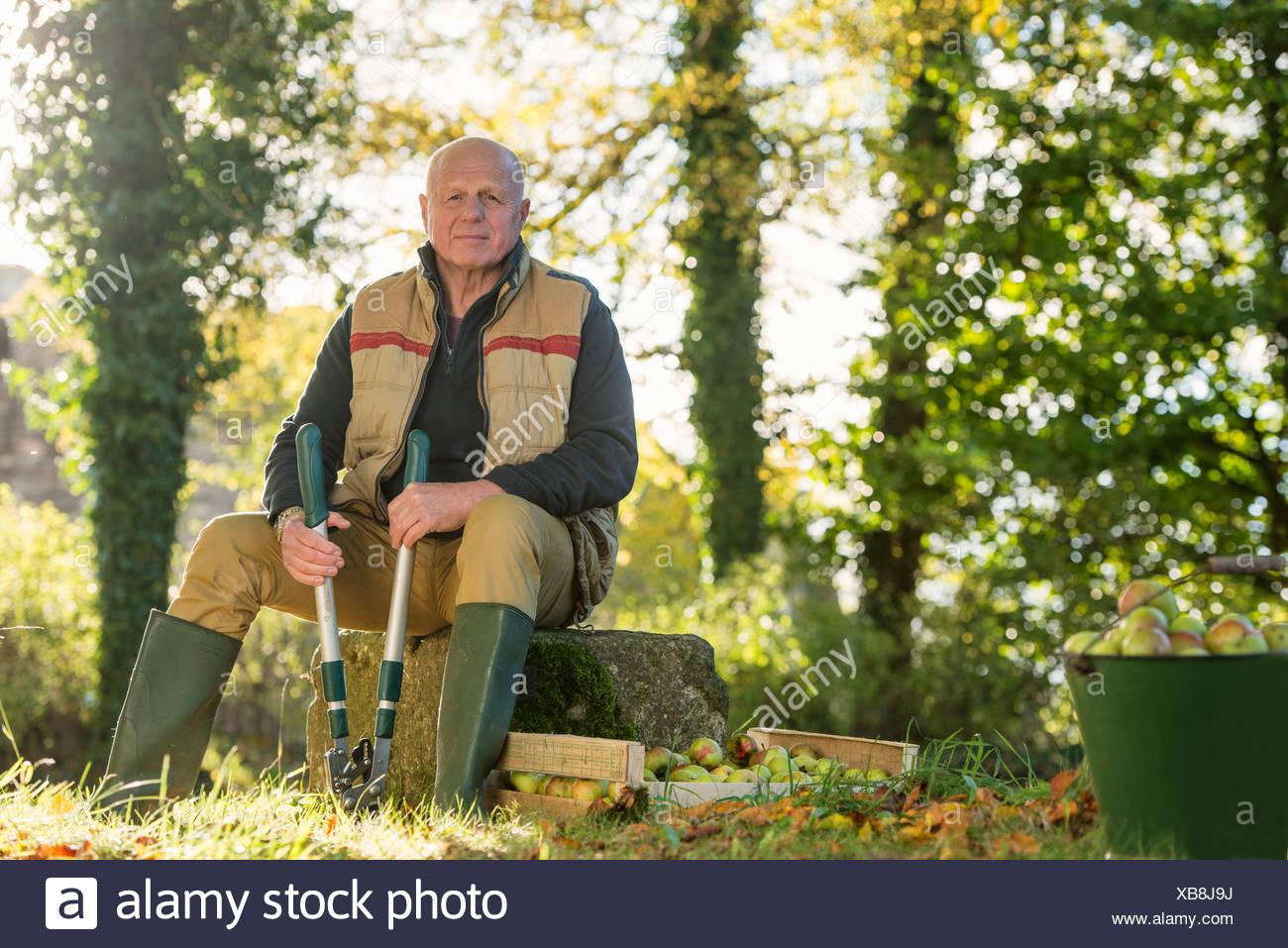 Portrait of senior man holding pruner - Stock Image