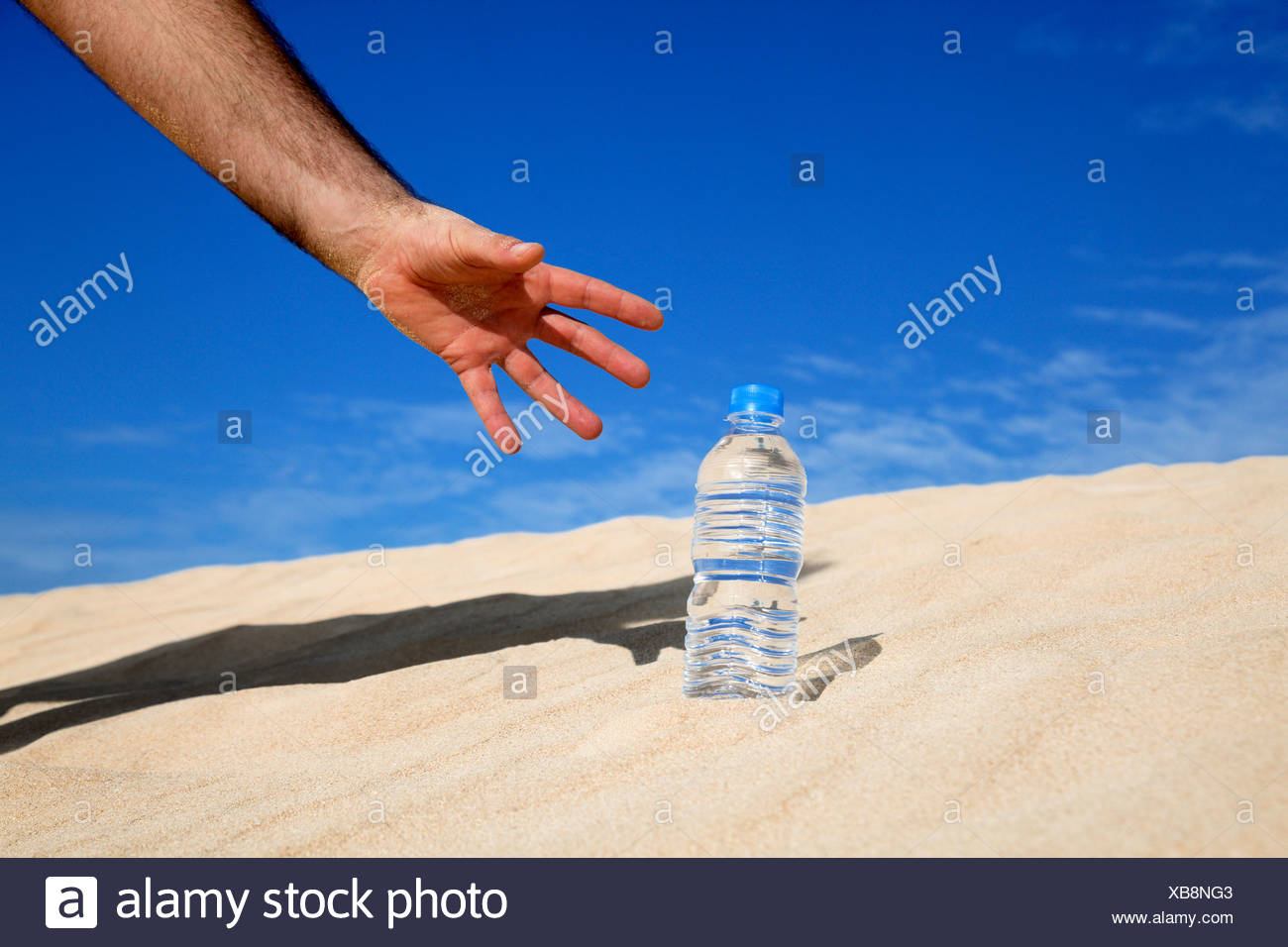 Thirst, conceptual image - Stock Image
