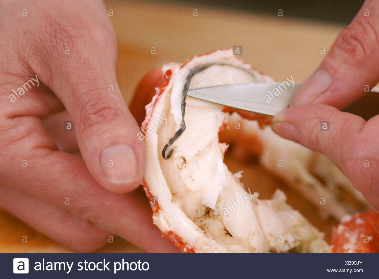 Removing Intestinal Tract From Lobster Tail Meat Stock Photo