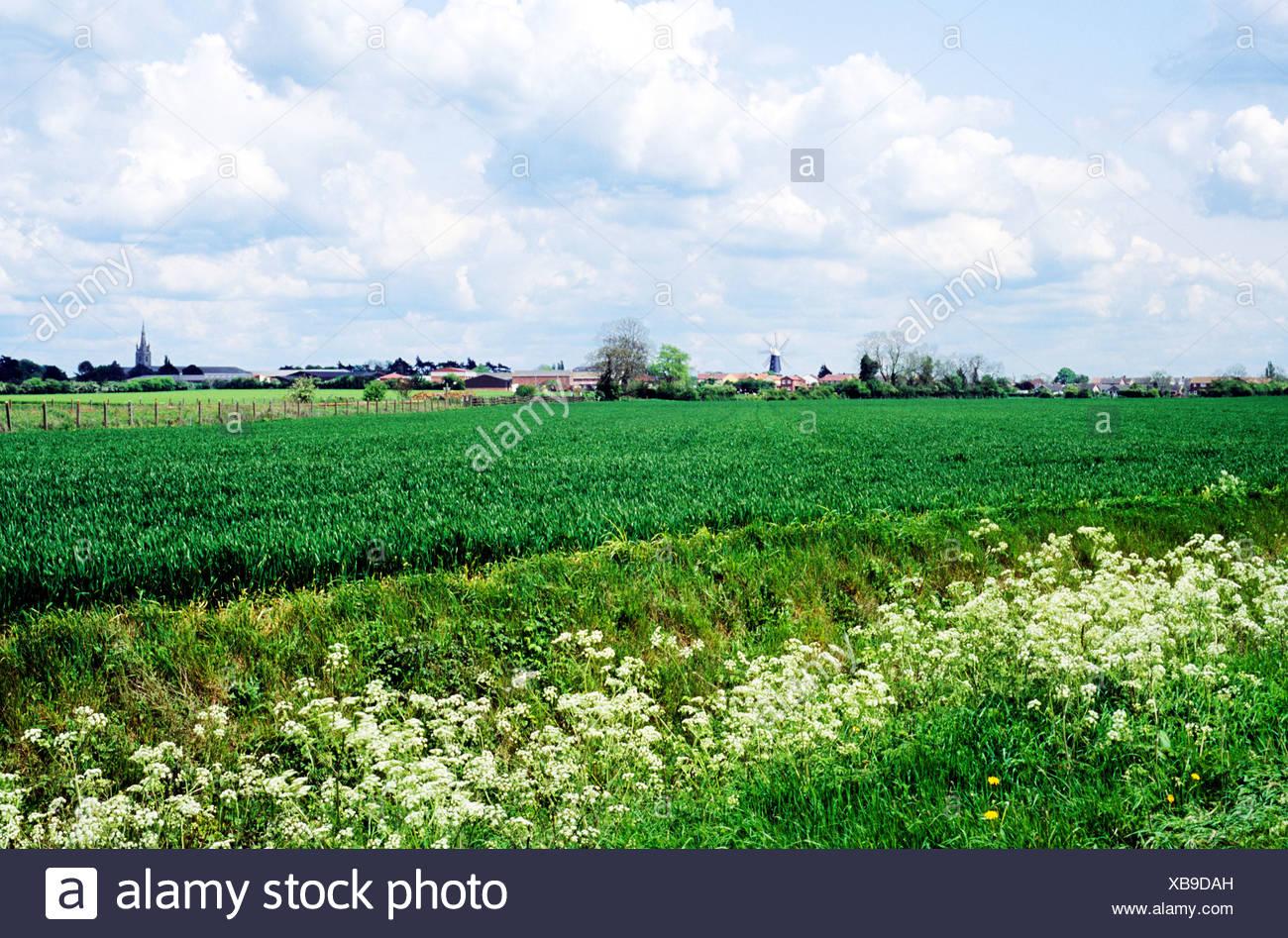 images of lincolnshire farming memories nostalgia