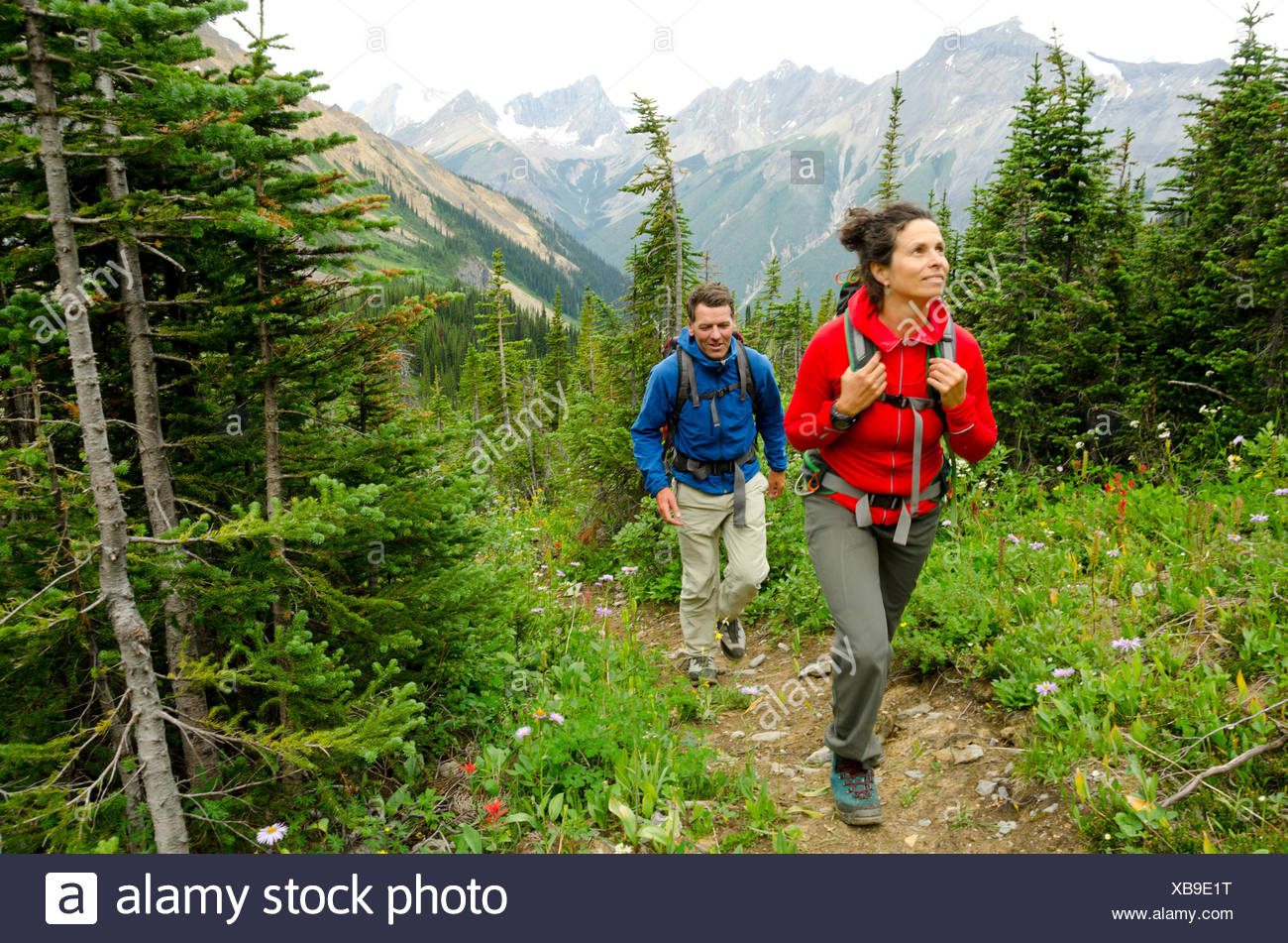 Hiking at Icefall Lodge north of Golden, British Columbia - Stock Image