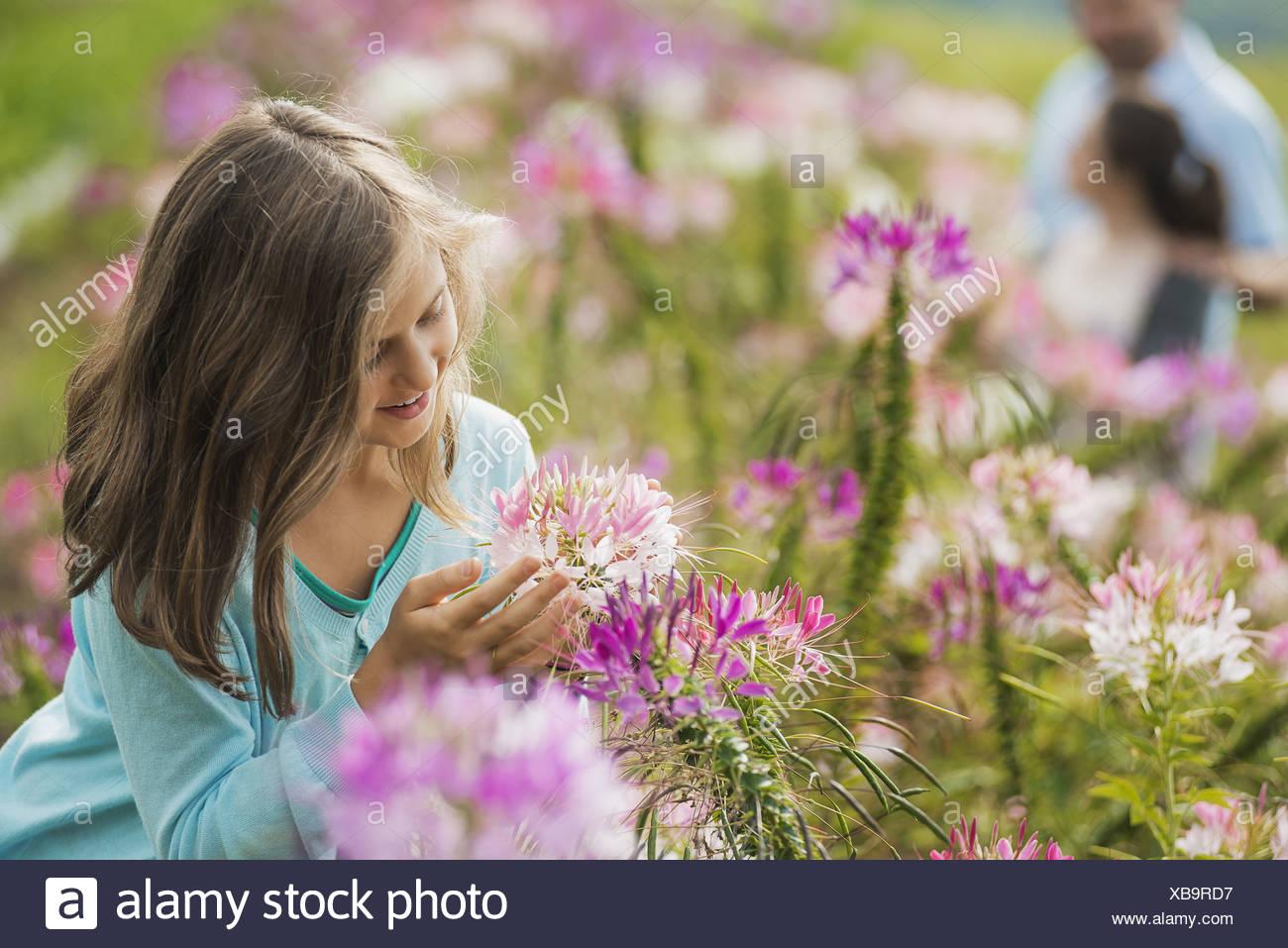 Woodstock New York USA Three people among the flowers organic Flower Farm - Stock Image