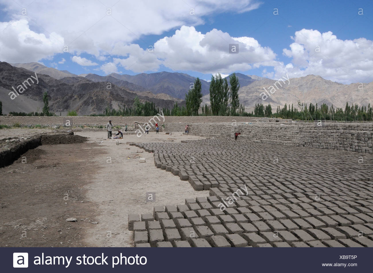 Brickyard which manufactures air-dried clay bricks in the Indus valley, Traktok, Ladakh, India, Himalayas, Asia - Stock Image