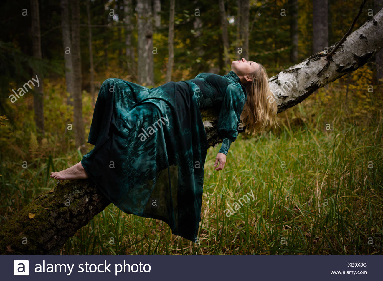 Woman In Green Long Dress Lying On Tree Trunk In Forest - Stock Image