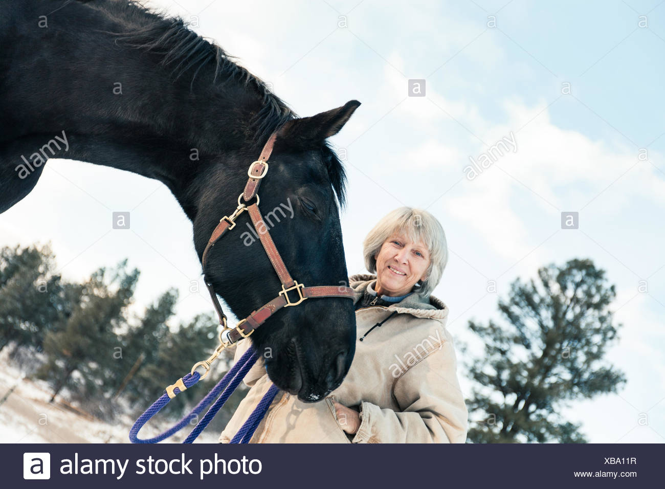 Senior adult woman standing with horse in snowy landscape Stock Photo