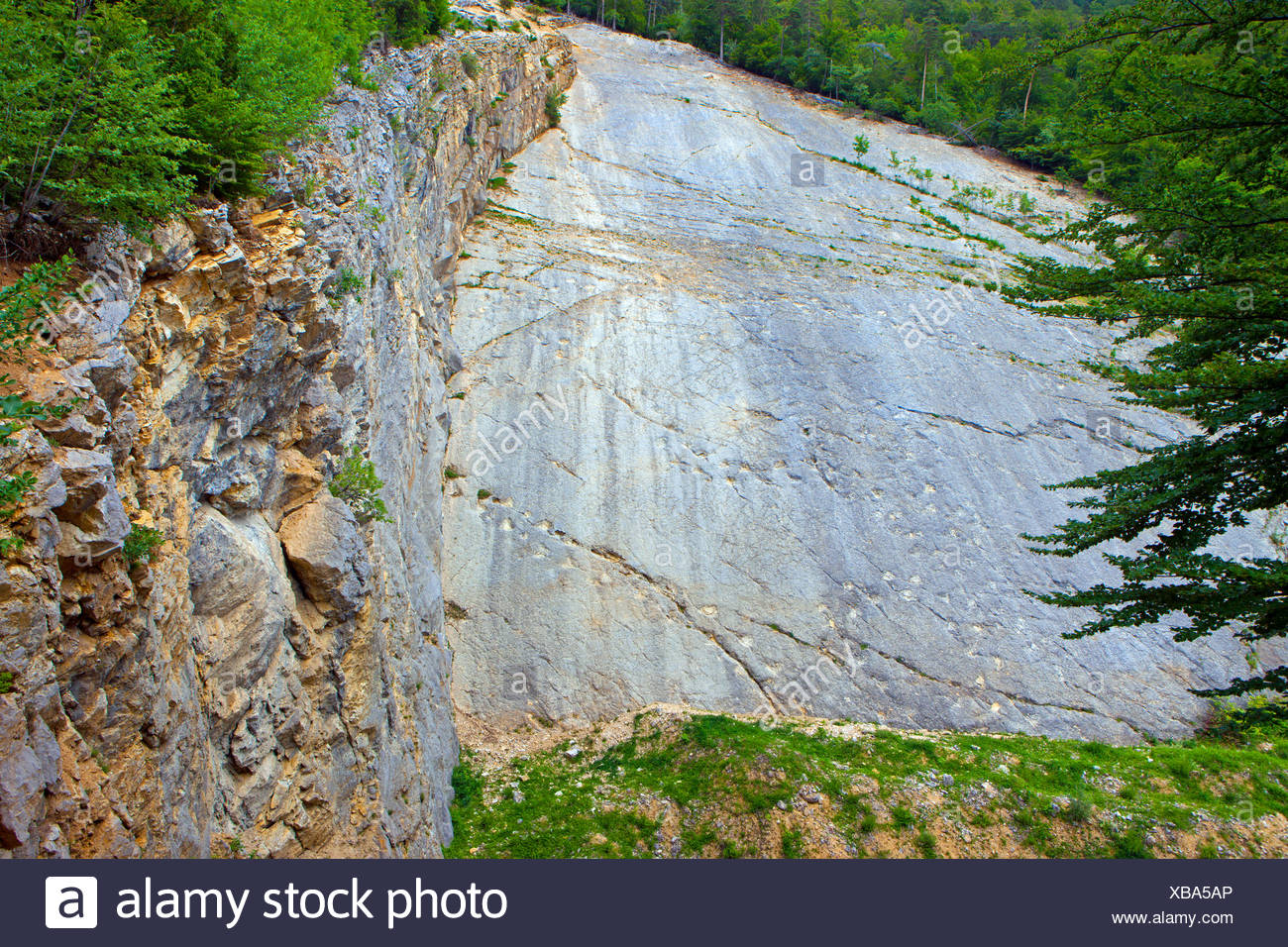 Lommiswil, saurian tracks, dinosaurs, Switzerland, canton Solothurn, stone quarry, rock, cliff, fossilization, fossils, geology, - Stock Image