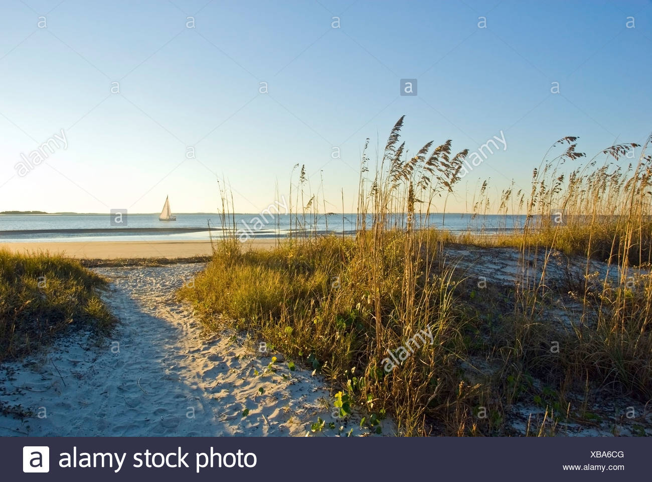 A sand pathway leads to the beach with a sailboat in the background on Hilton Head Island, SC. - Stock Image