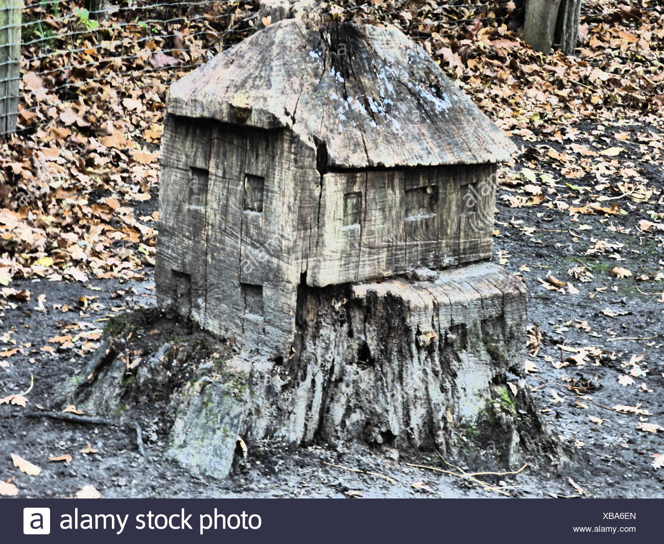 House Carved From Tree Stump - Stock Image