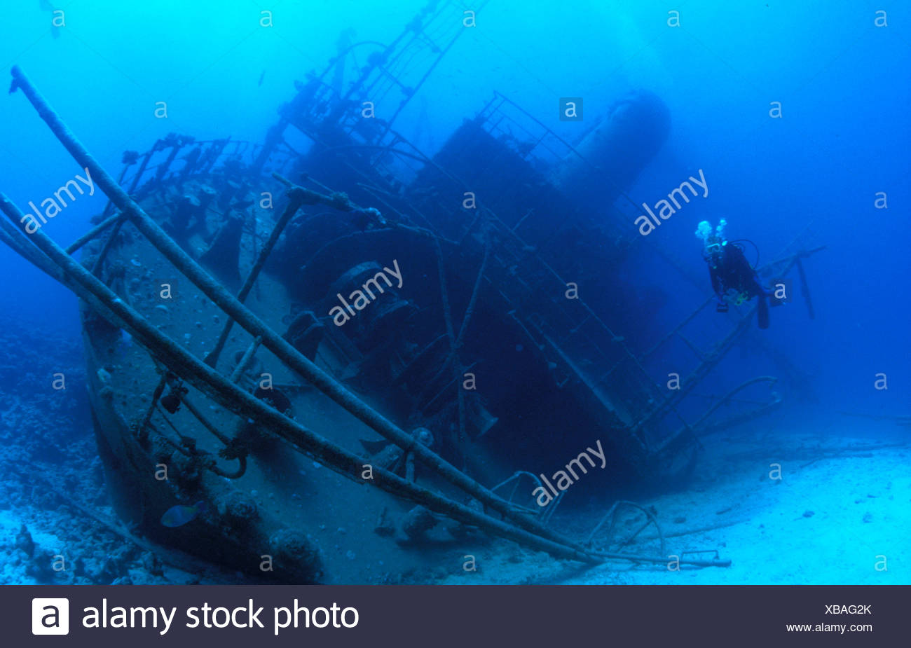 Shipwreck Giannis D with diver Egypt - Stock Image