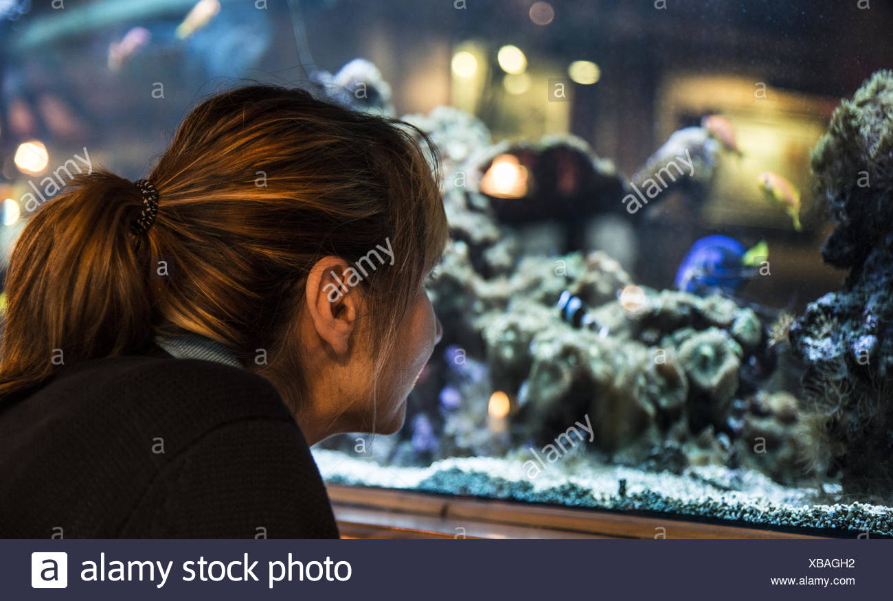 Woman looking into aquarium Stock Photo