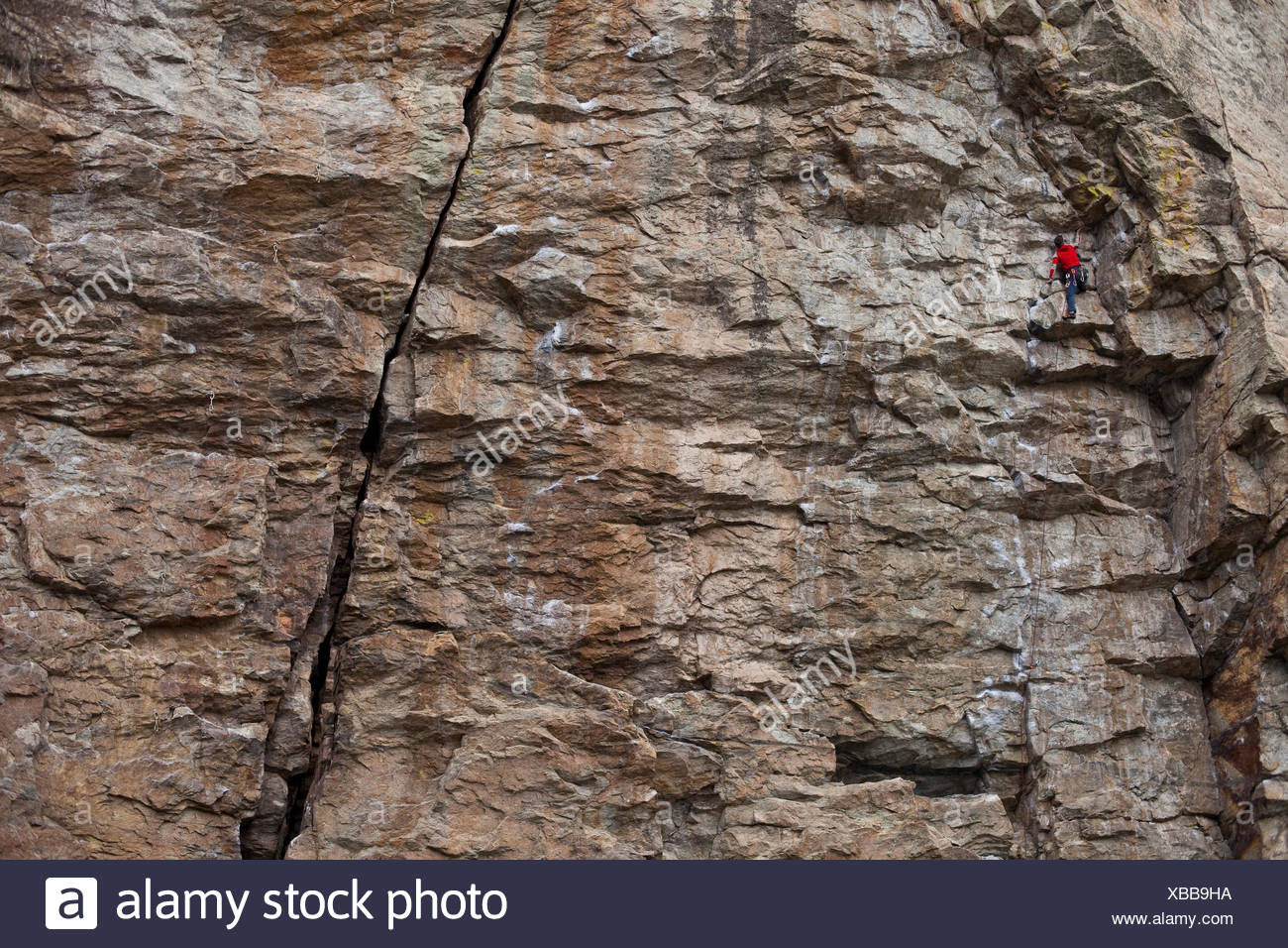 A male sport climber ascends Grin & Bear it 11b, Skaha, BC - Stock Image