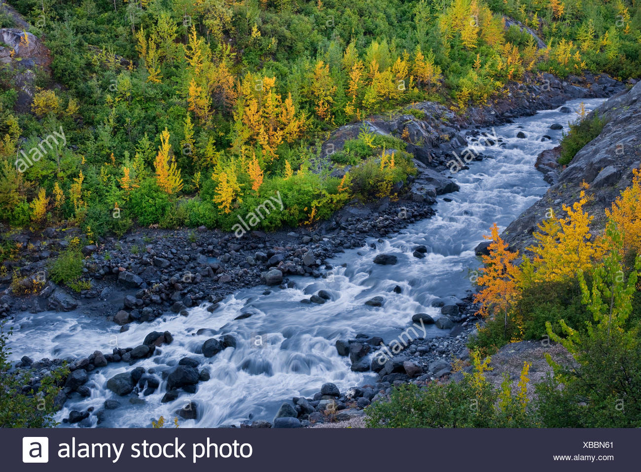 Overlooking Eagle River Gorge, Chugach State Park, Southcentral Alaska, Autumn - Stock Image
