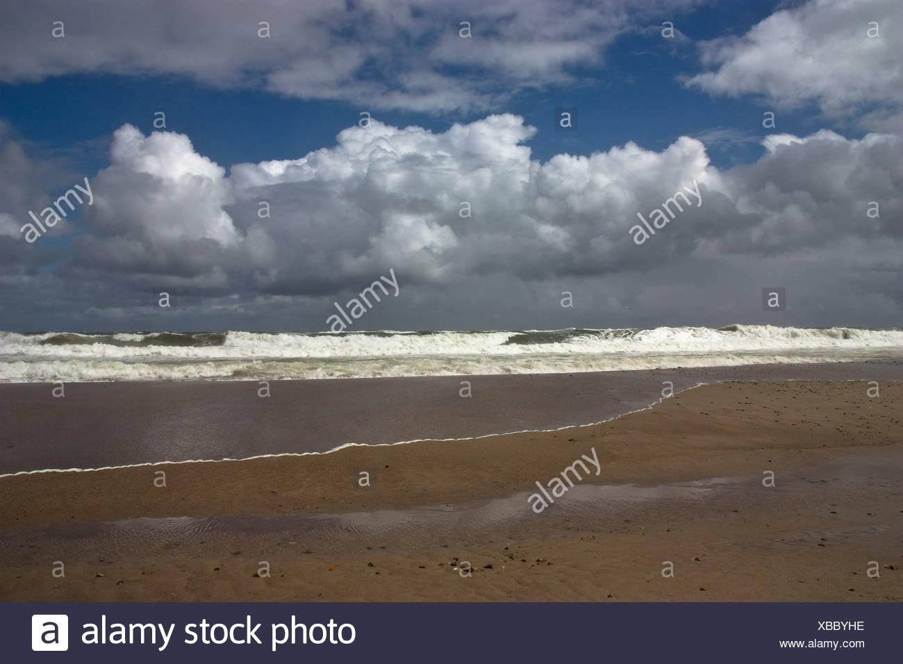 Denmark, Vrist, View of north sea coast - Stock Image
