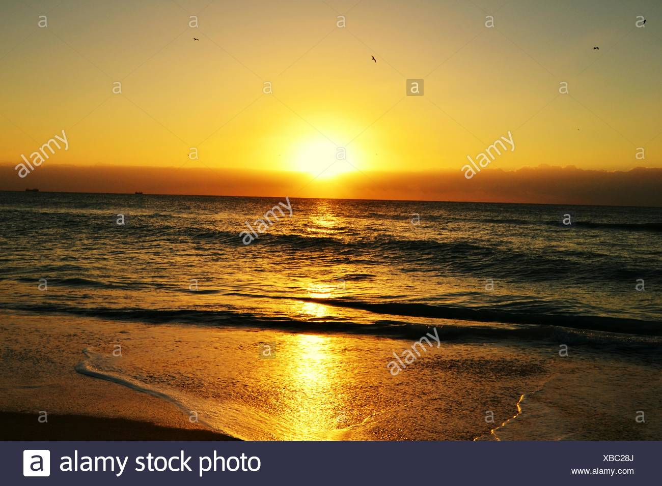Scenic View Of Sunrise At Beach - Stock Image