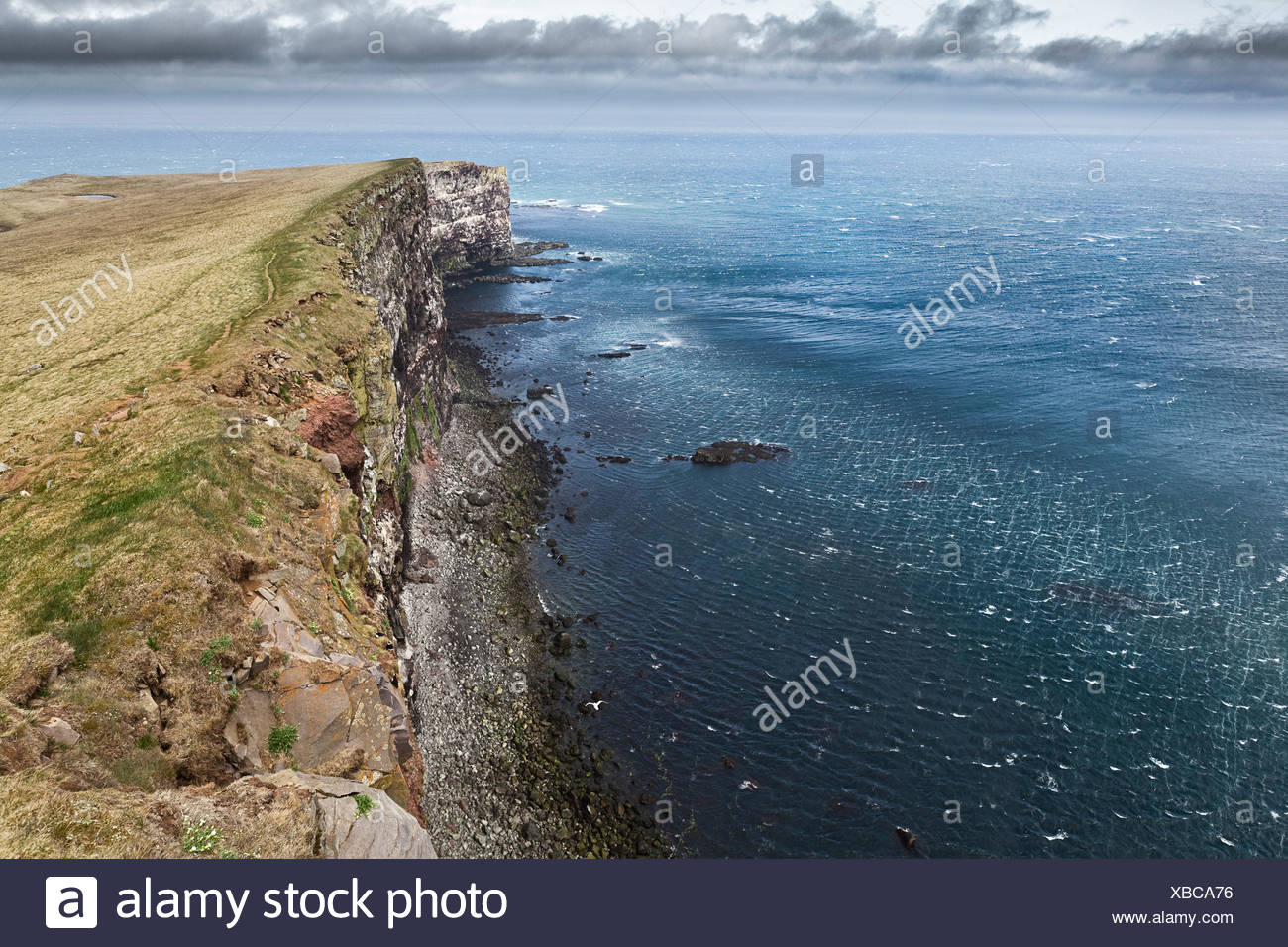 Cliffs and sea on the coast of Látrabjarg, Lautrabag, famous bird rocks at Cape Bjargtangar, the westernmost point of Iceland - Stock Image