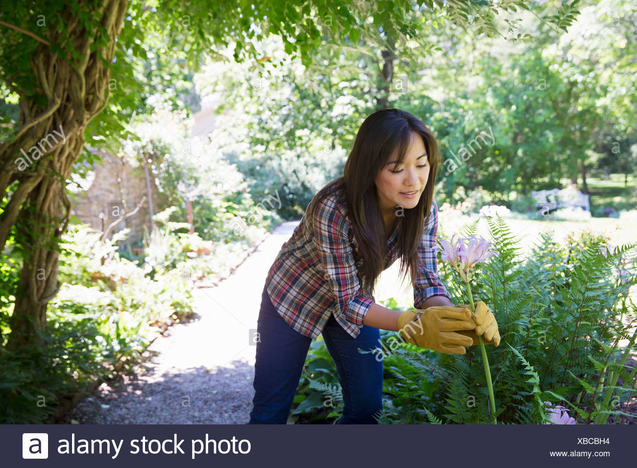 A farm growing and selling organic vegetables and fruit. A young woman working. Stock Photo