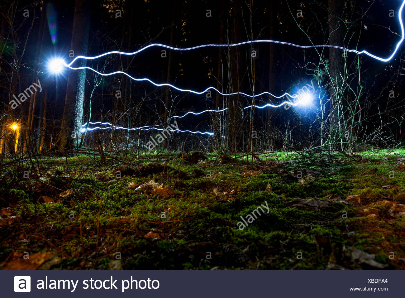 Blue light trails in forest - Stock Image