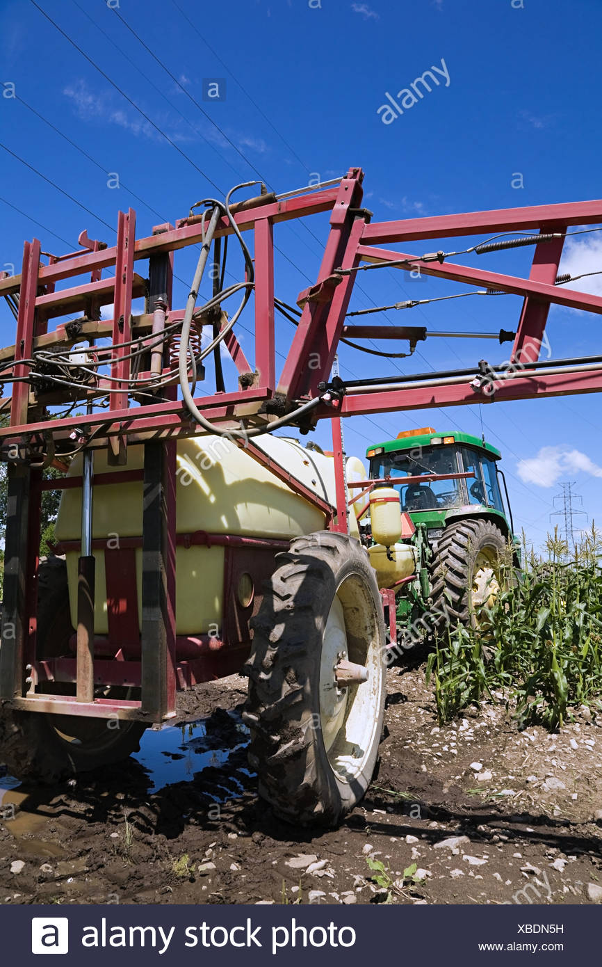 Tractor spraying crops - Stock Image