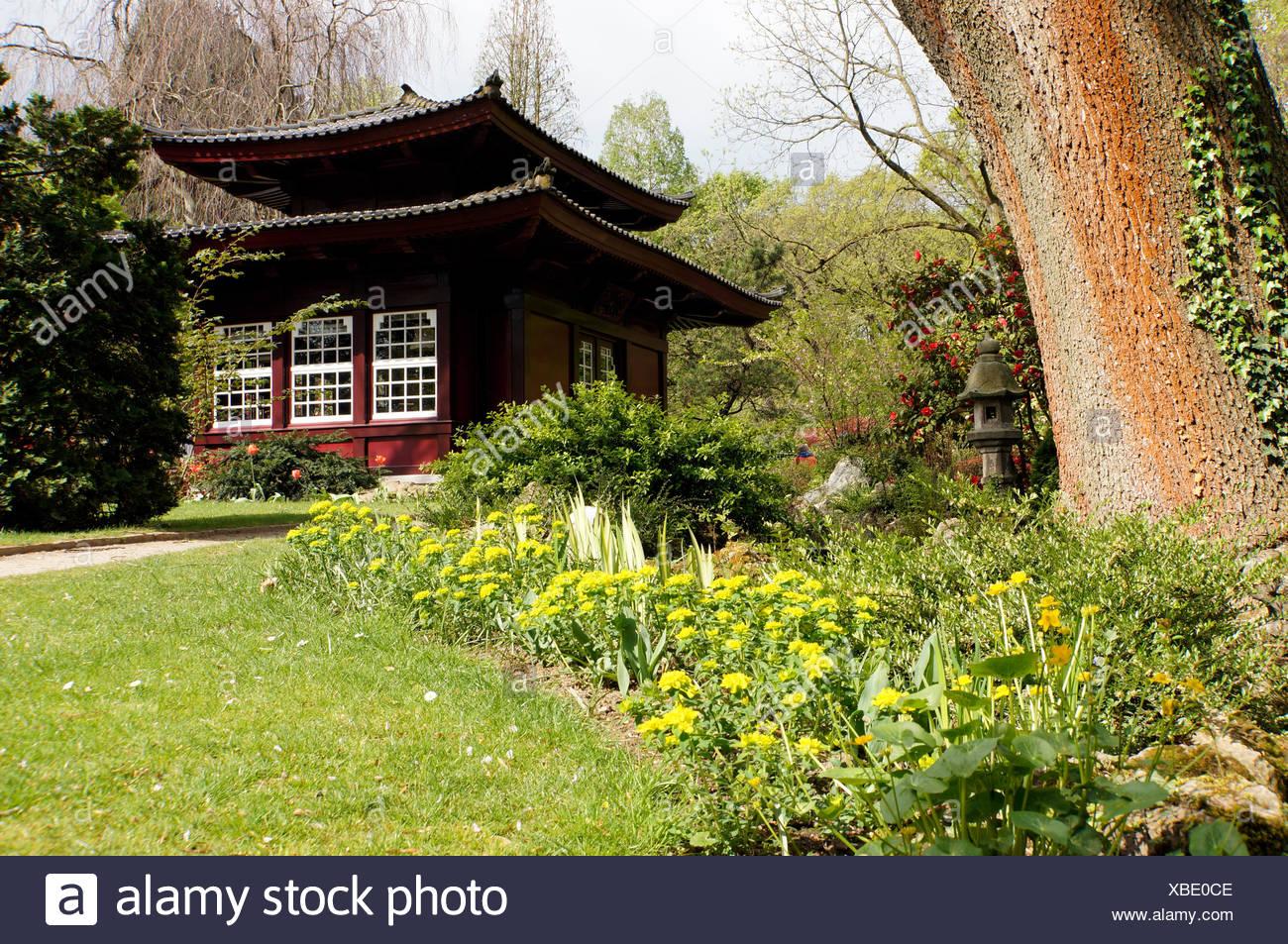 japanisches Teehaus, Leverkusen, Nordrhein-Westfalen, Deutschland Ideen