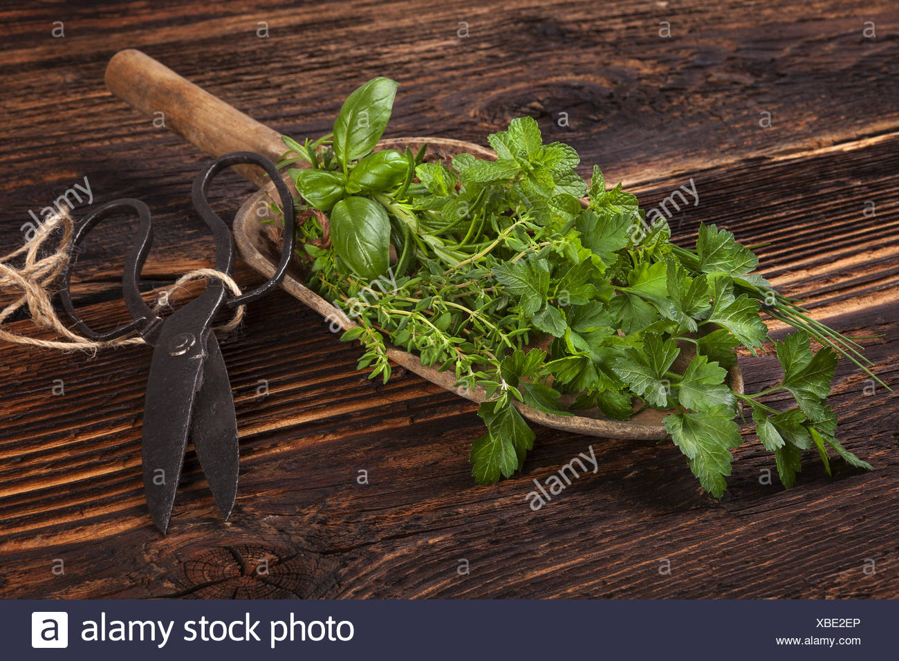Various aromatic culinary herbs, rustic style. - Stock Image
