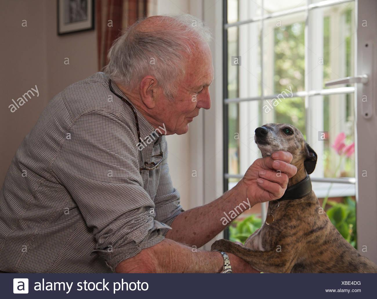 Senior man stroking pet dog - Stock Image
