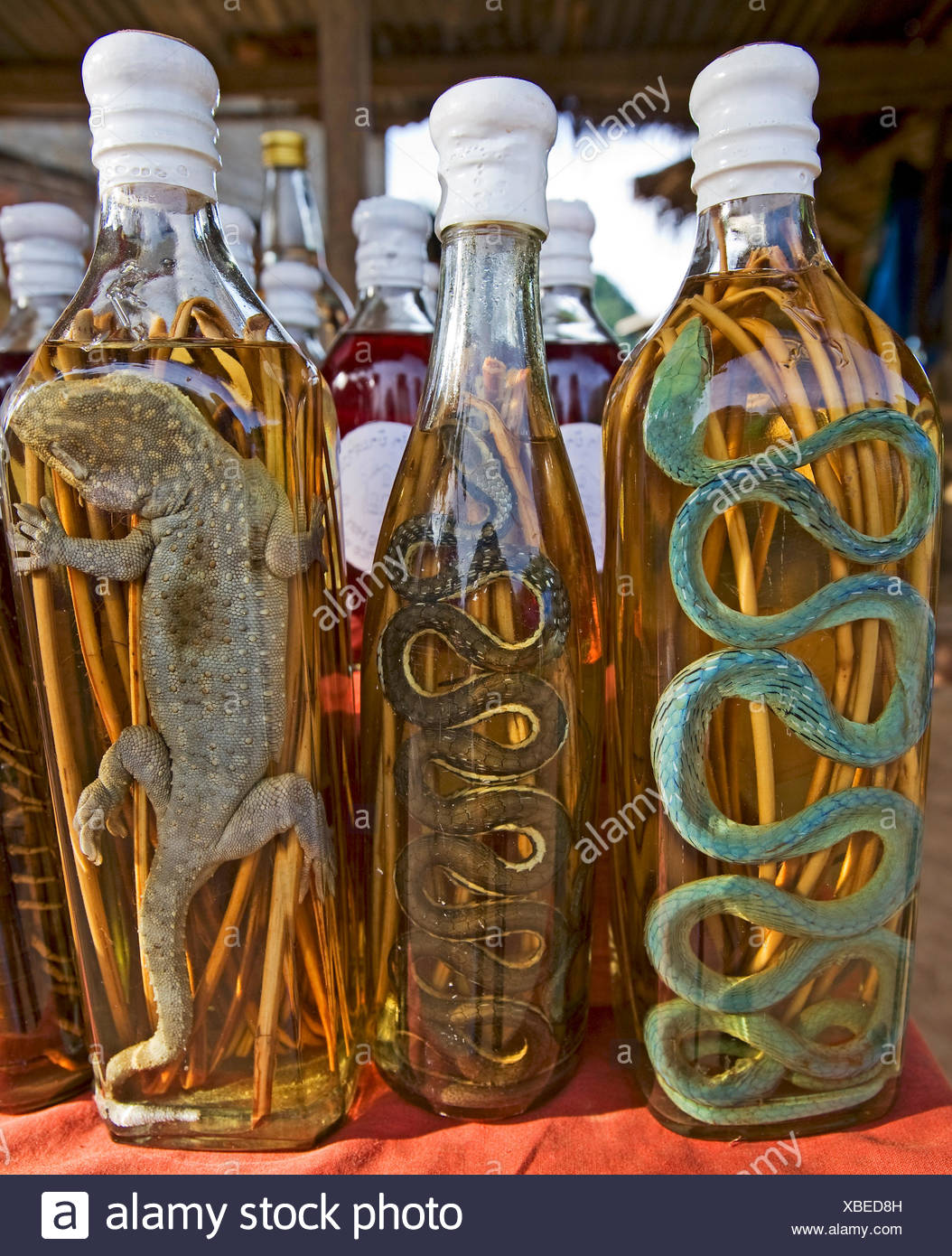 asian brandy with reptiles Stock Photo