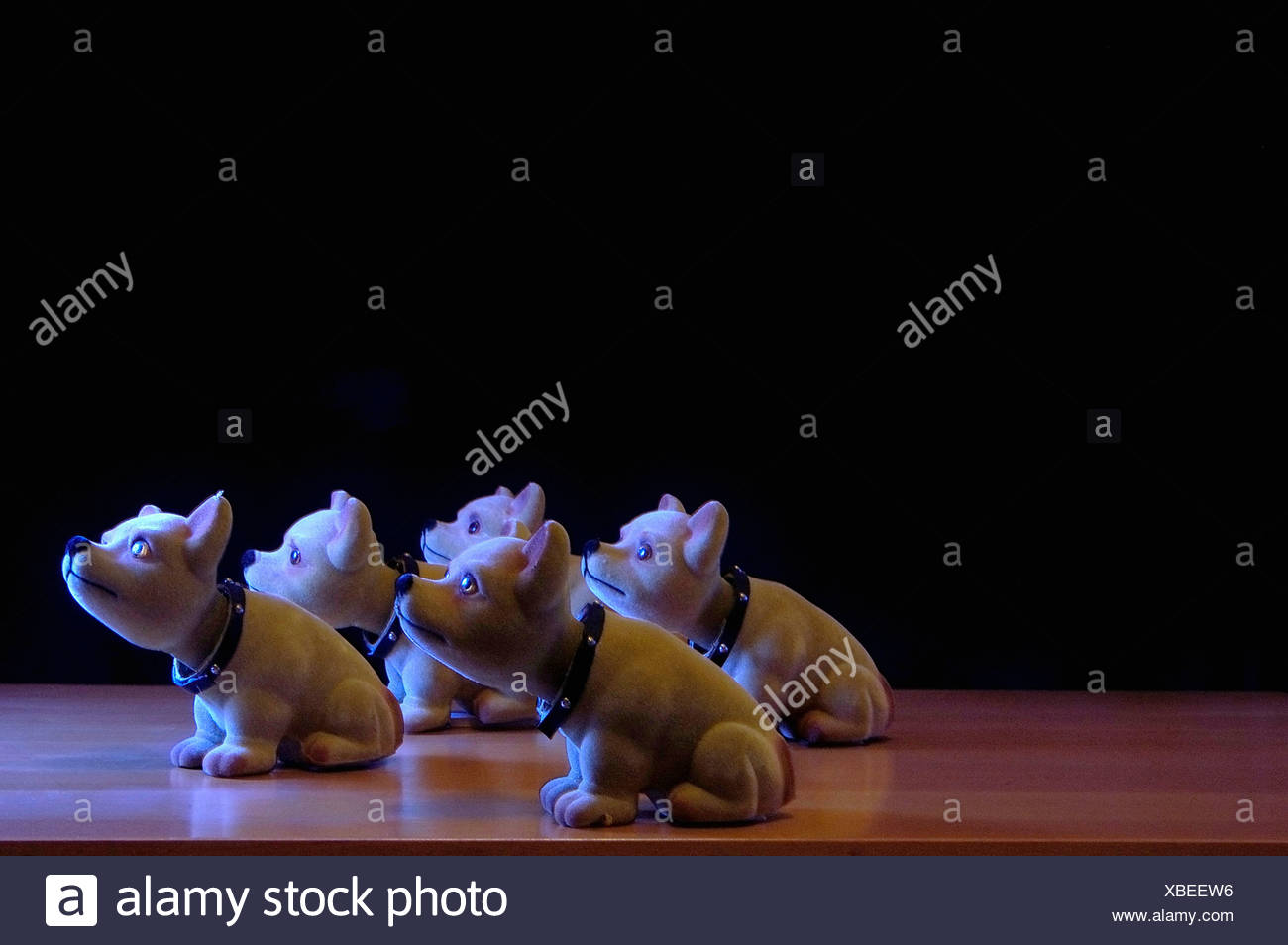 Still life with five toy dogs - Stock Image