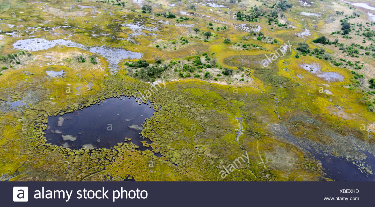 Aerial view of the flooded plains of the Okavango Delta. - Stock Image