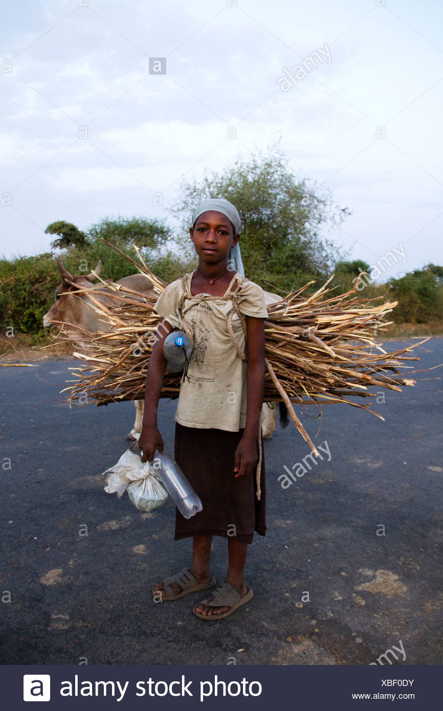 Child carrying firewood, near Arba Minch, Omo Valley, South Ethiopia, Africa Stock Photo