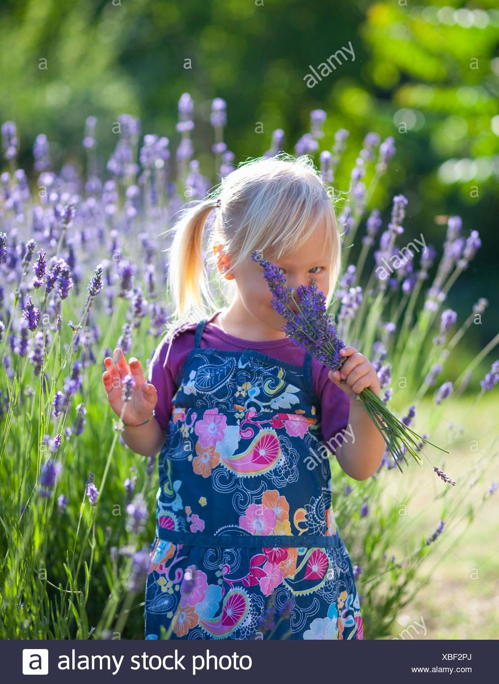Girl smelling lavender flowers - Stock Image