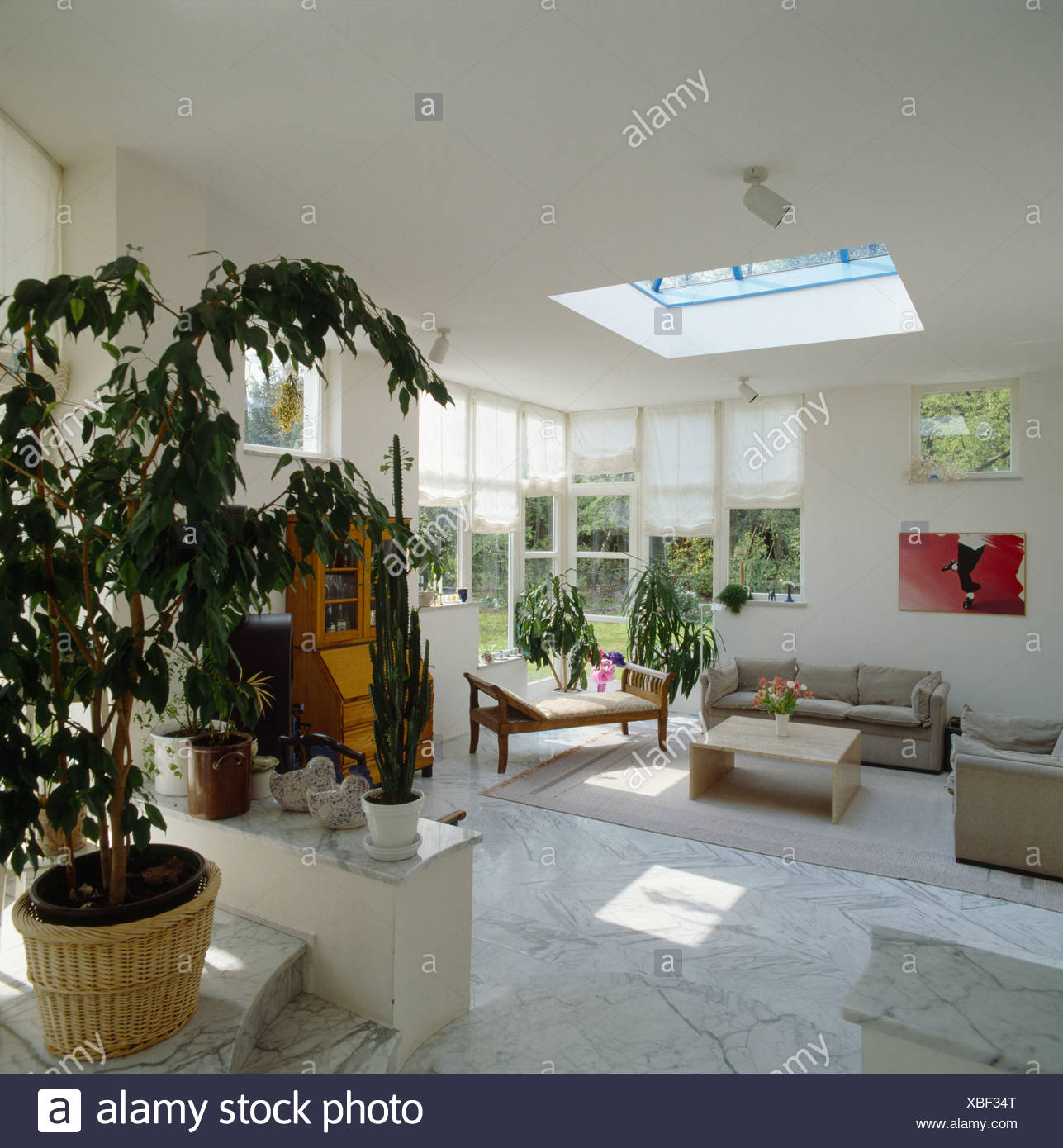 Beige Sofas And Marble Floor Tiles In Modern White Living Room Extension With Tall Houseplant Stock Photo Alamy